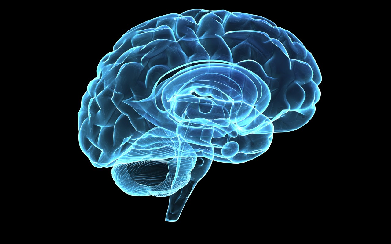 What happens when a brain doctor has an extremely rare stroke? - Promentum Speakers