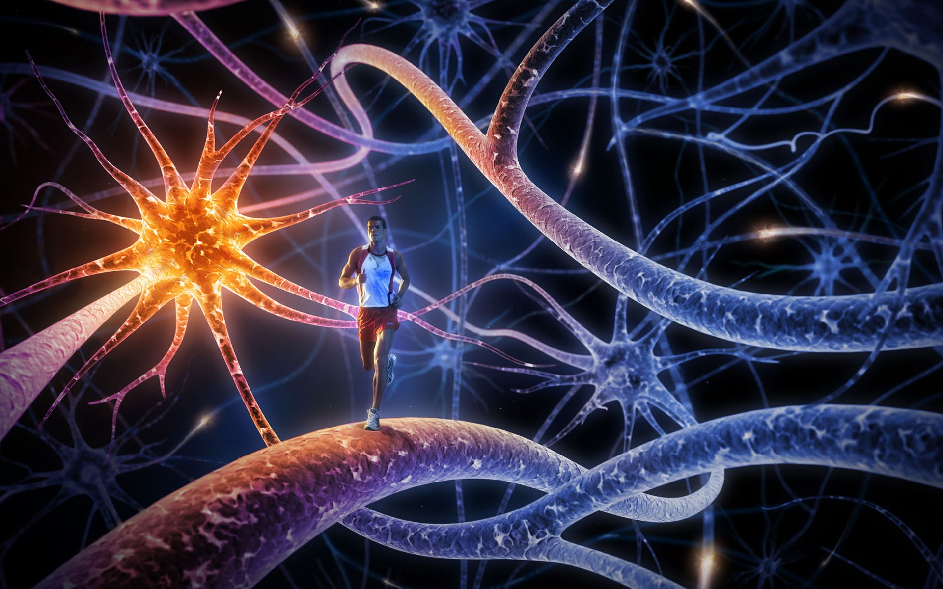 new interest in the field of neuroscience, the scientific study of the brain and the nervous system. We've long had theories about how learning takes place ...