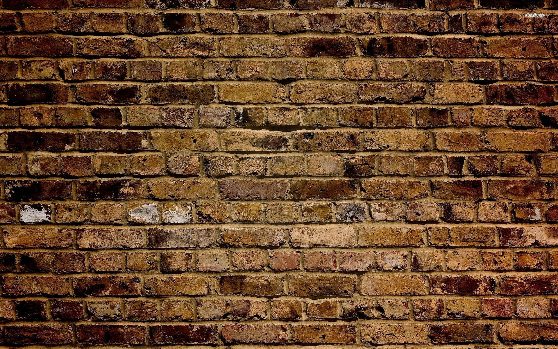 Brick wallpaper 1920x1200 41077 for Pretty wallpaper for walls