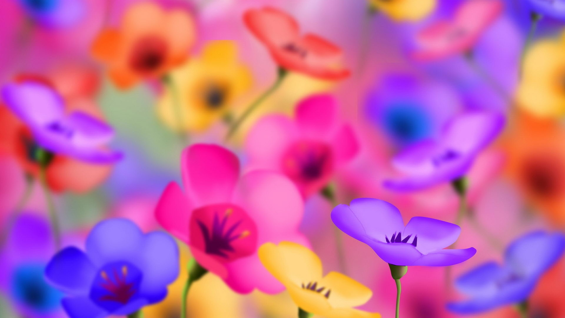 Bright Colored Flowers Wallpaper