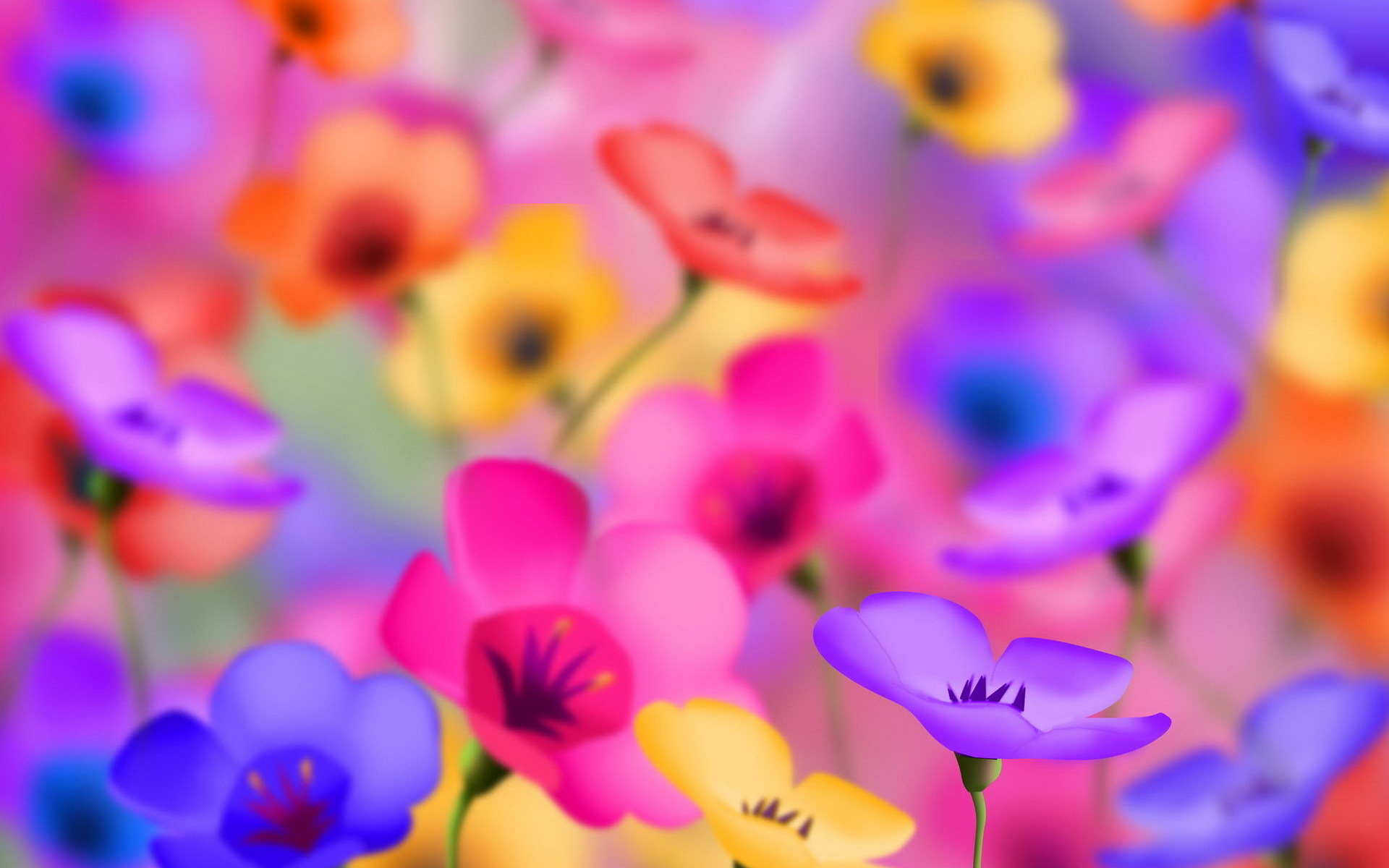 Bright Flower Wallpaper: Wallpapers for Gt Bright Flower Backgrounds 1920x1200px