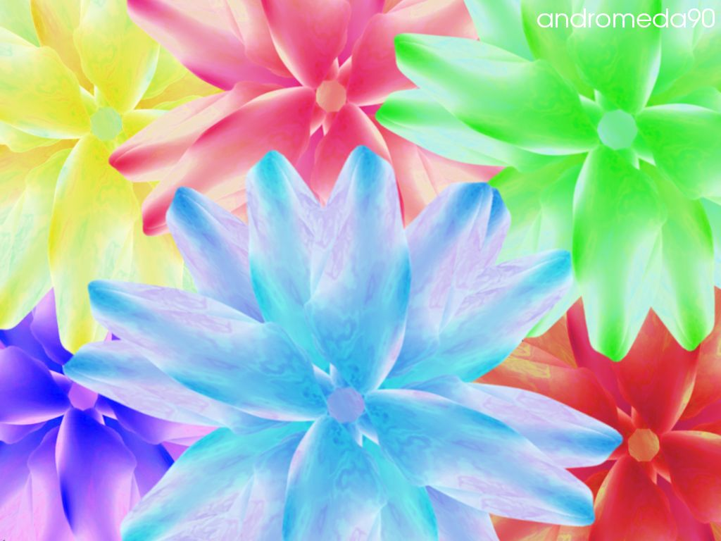 Bright Flowers Wallpaper HD