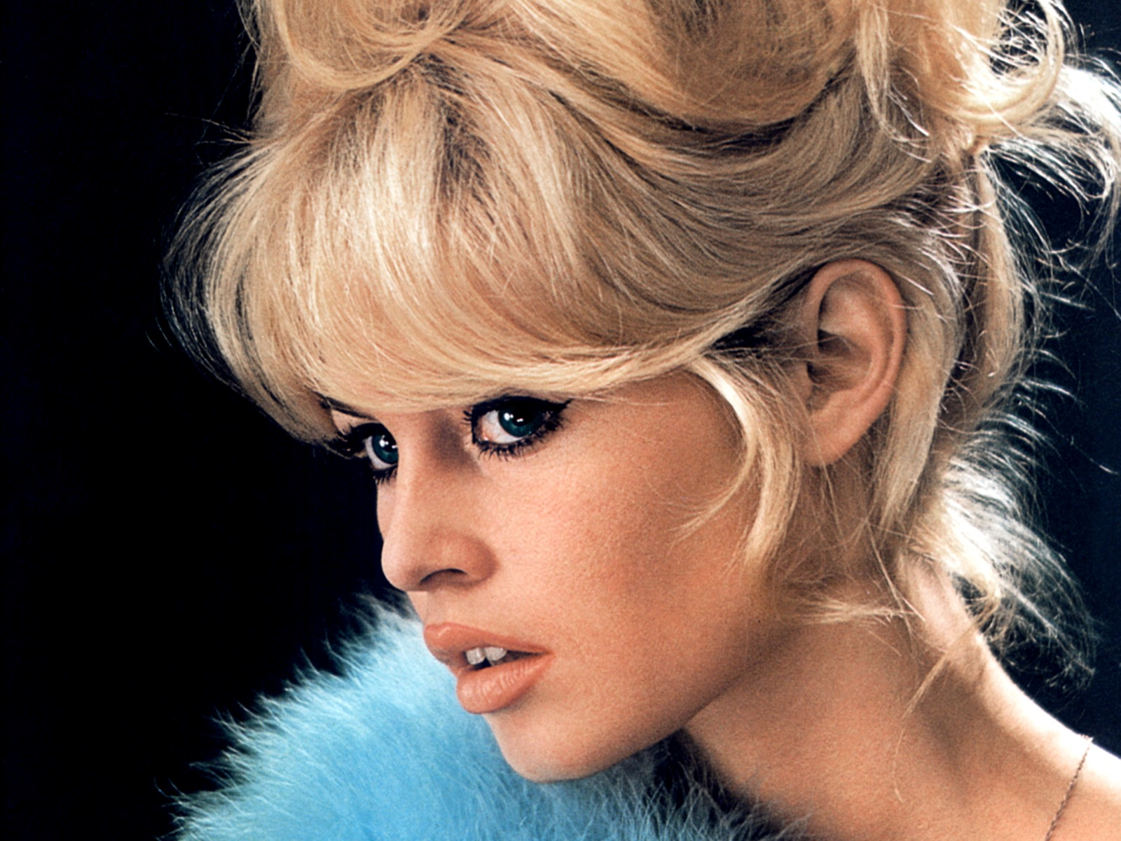 Brigitte Bardot, formerly one of the most beautiful women in the world, is now