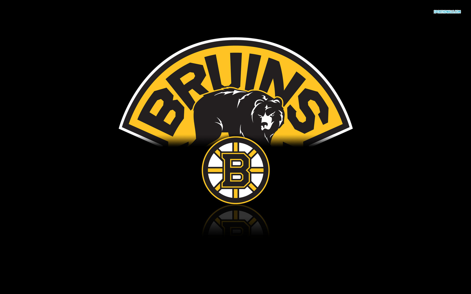 Boston Bruins wallpaper 1920x1200