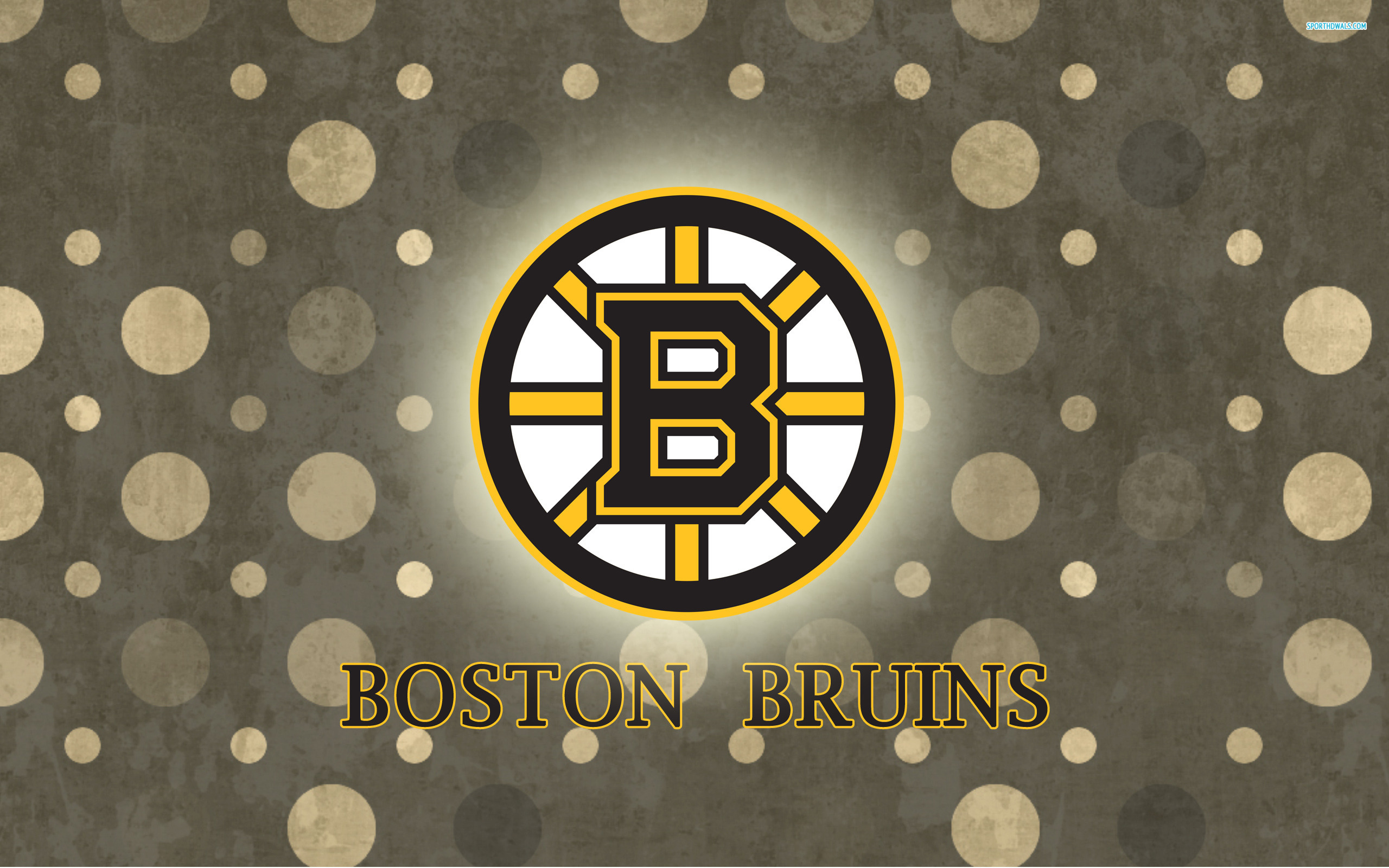 Bruins wallpaper 2560x1600 69174