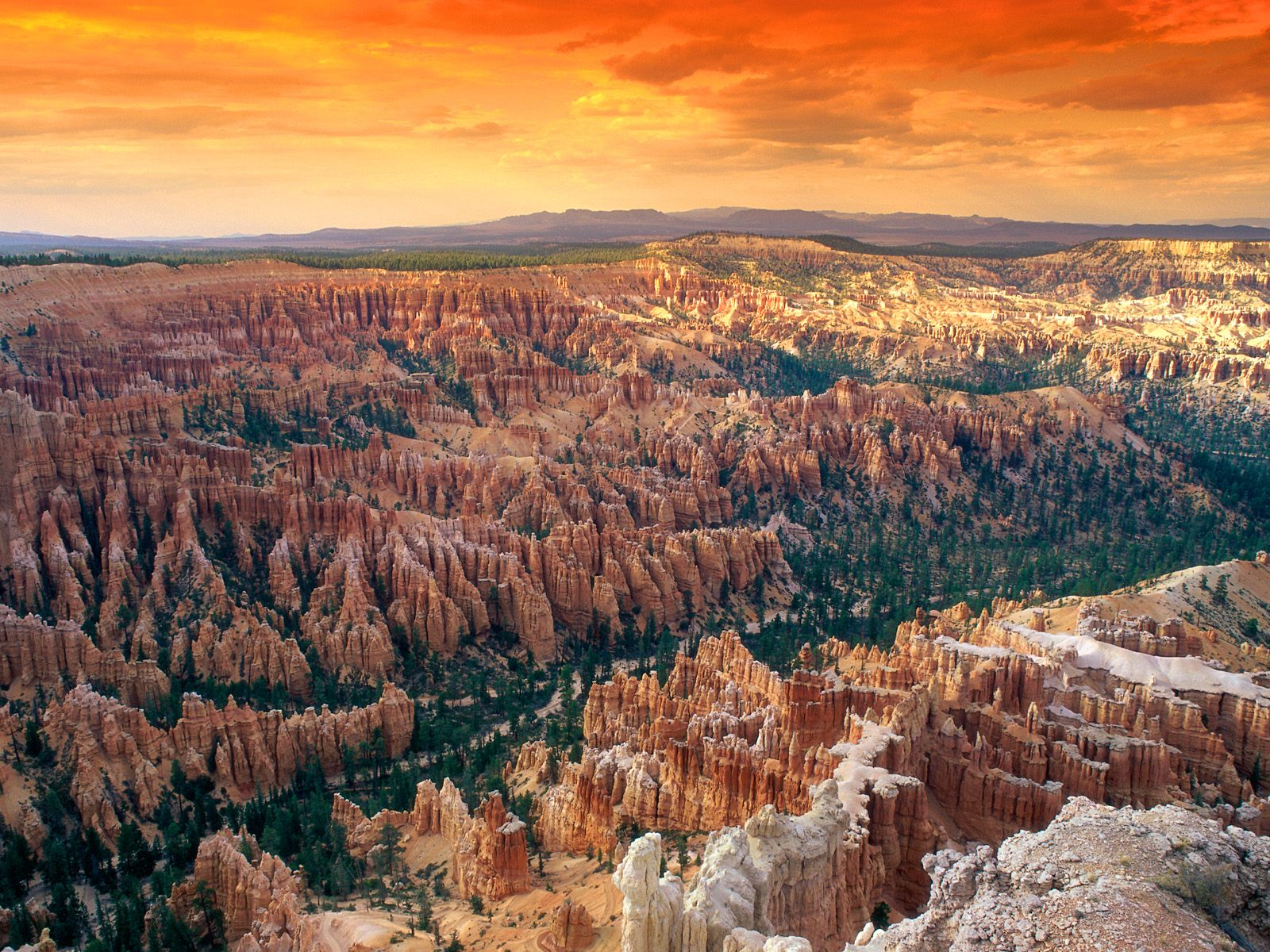 Bryce Canyon Wallpaper HD