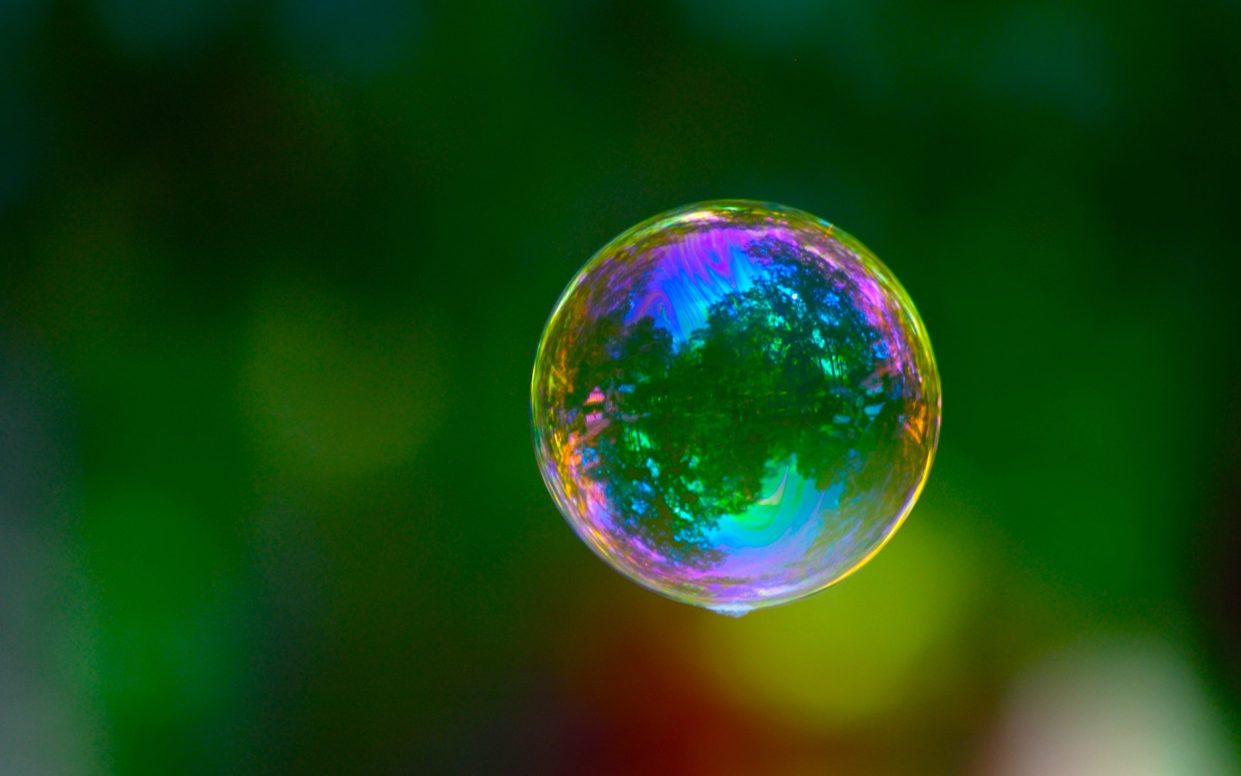Every person lives in his or her own bubble, either by choice, ignorance or default. This occurs more often than not. Sometimes we intentionally get inside ...