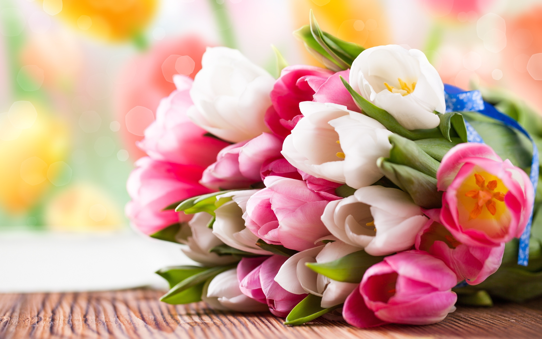 Bunch colourful tulips Wallpaper in 2880x1800 Retina 15''