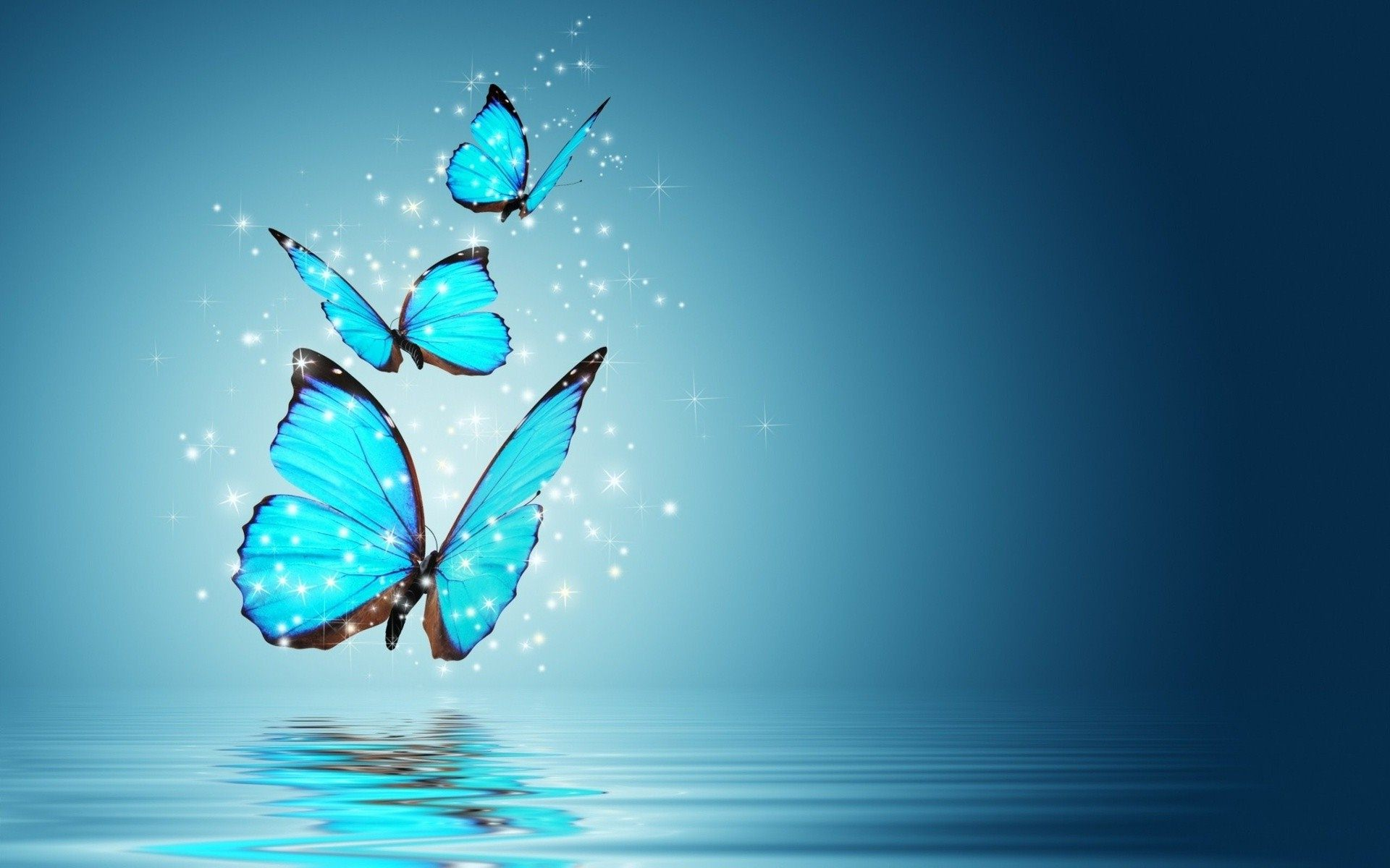 Abstract Blue Butterfly Insect Hd Wallpapers High Resolution