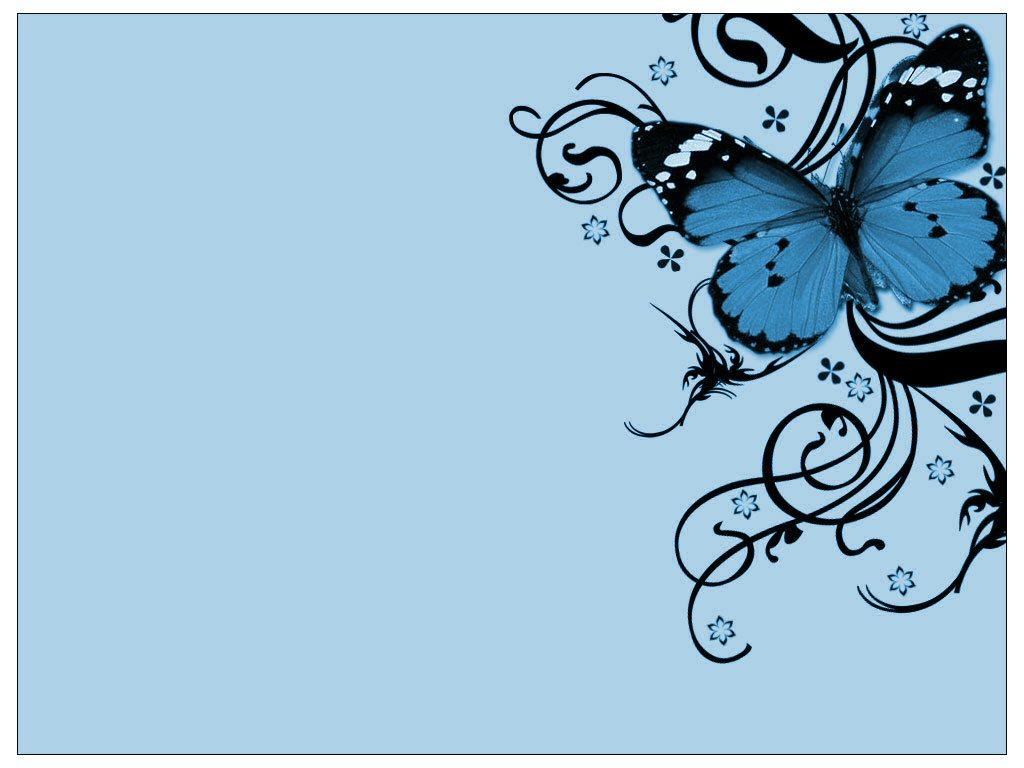 Butterfly - butterflies Wallpaper
