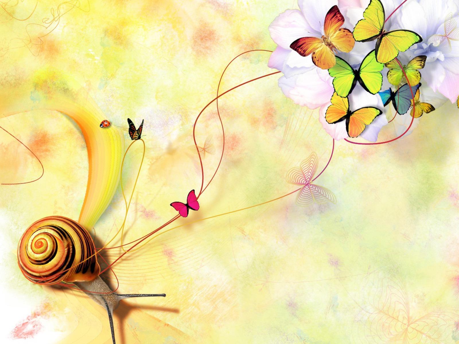 Butterfly Wallpaper Awesome Desktop Wallmetacom 1600x1200px