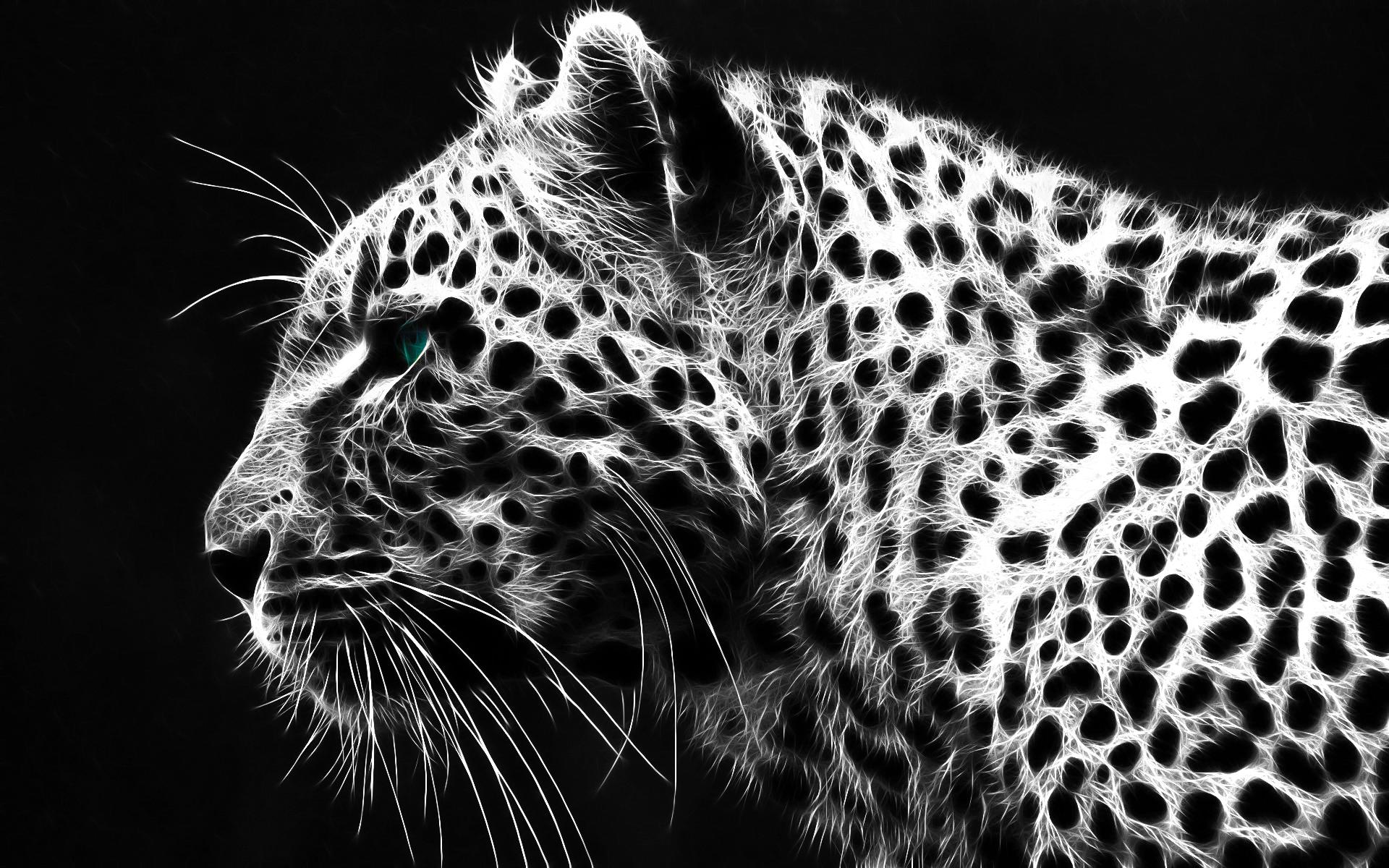 BW Leopard Wallpaper