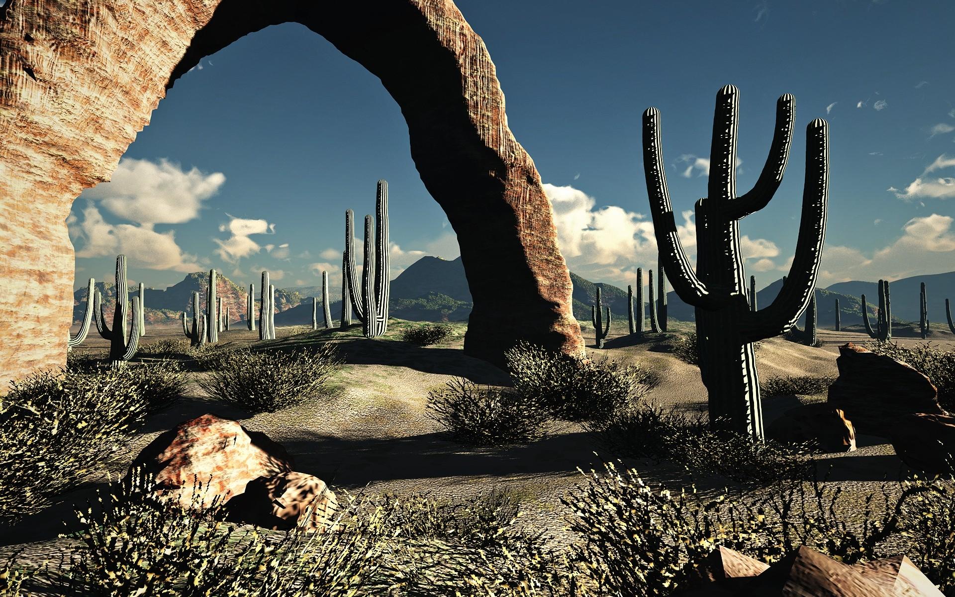 landscapes nature desert cactus wallpaper