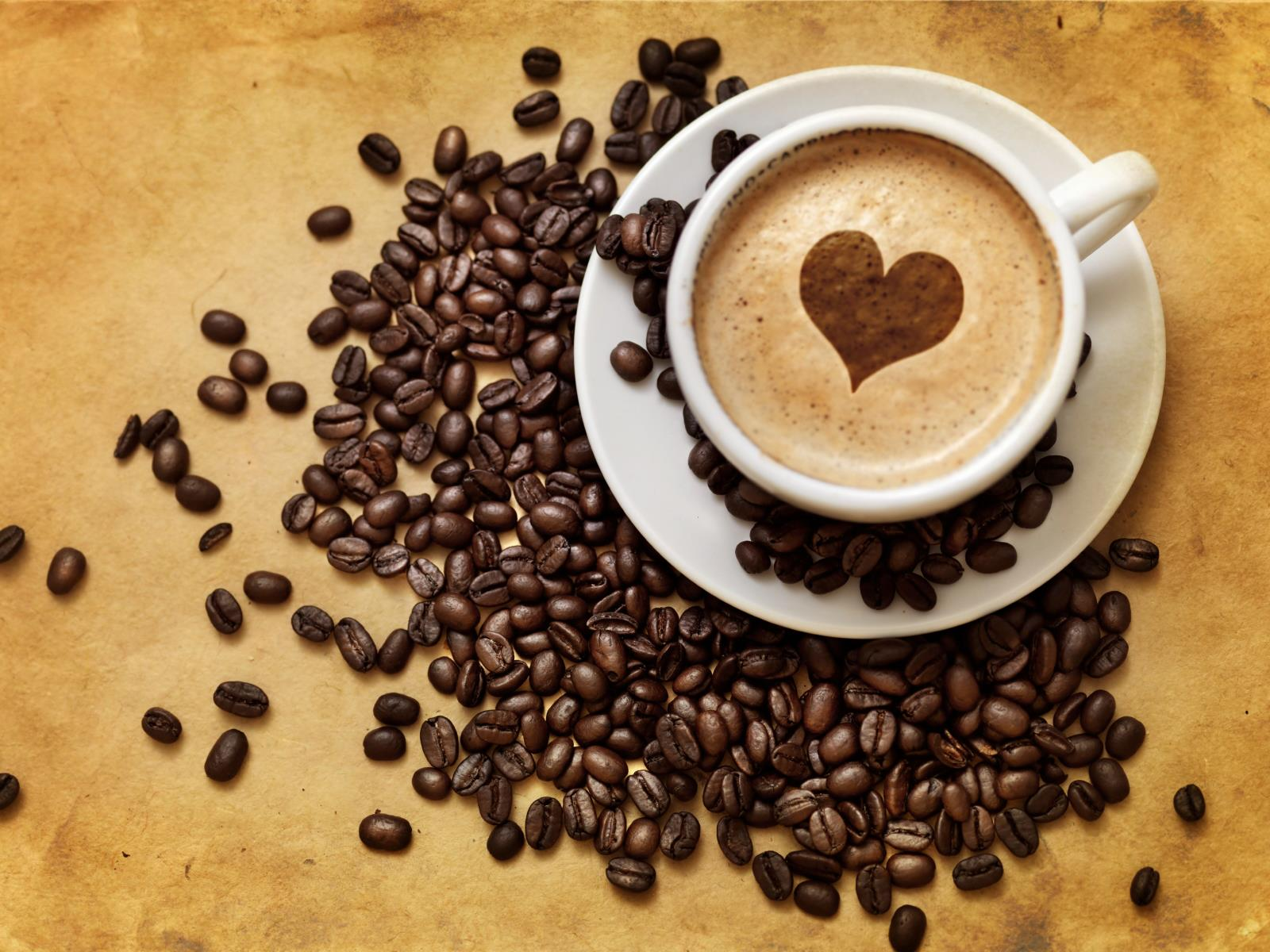 How to Use Text Message Marketing for Your Cafe