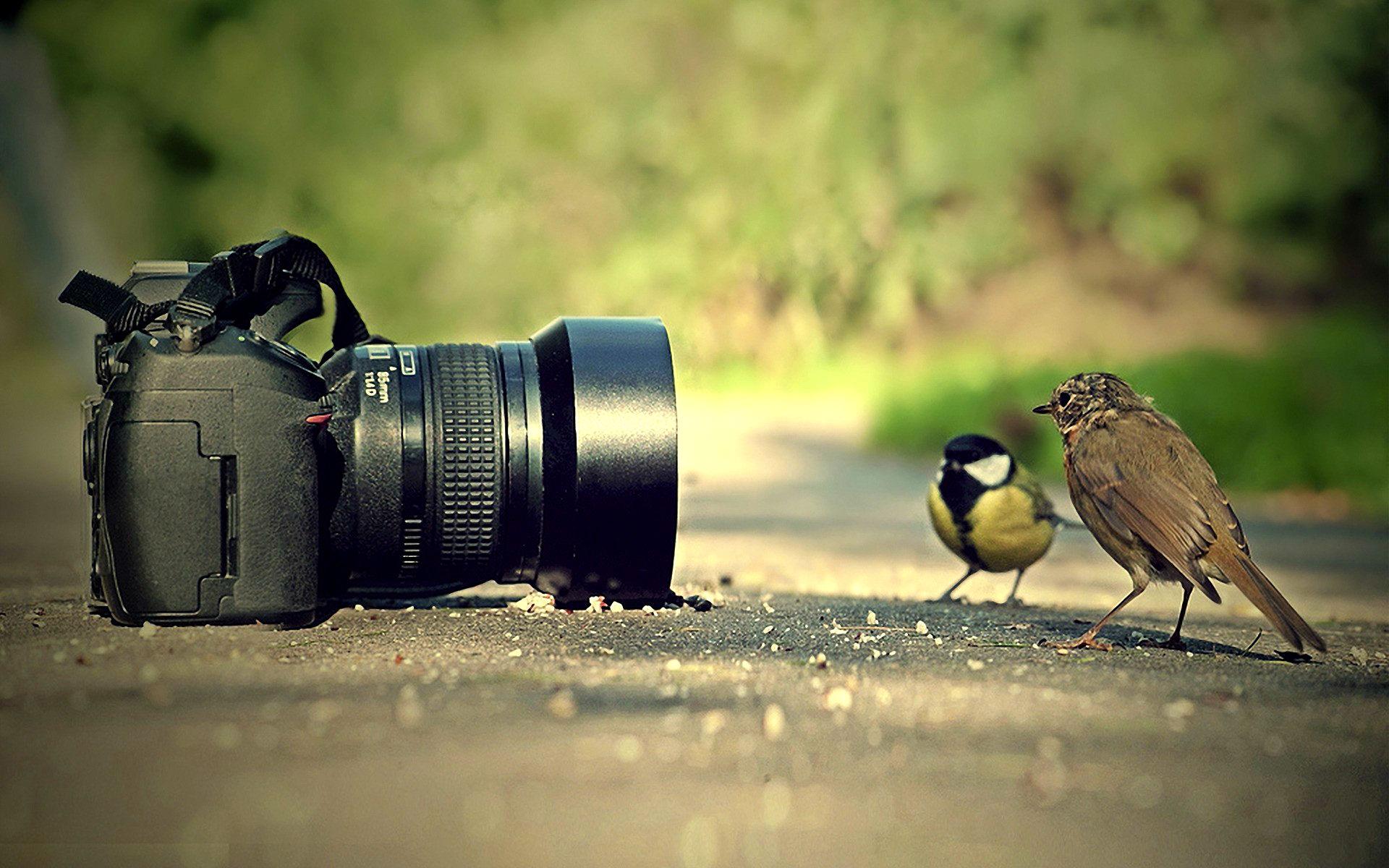 ... Camera Wallpaper; Camera Wallpaper