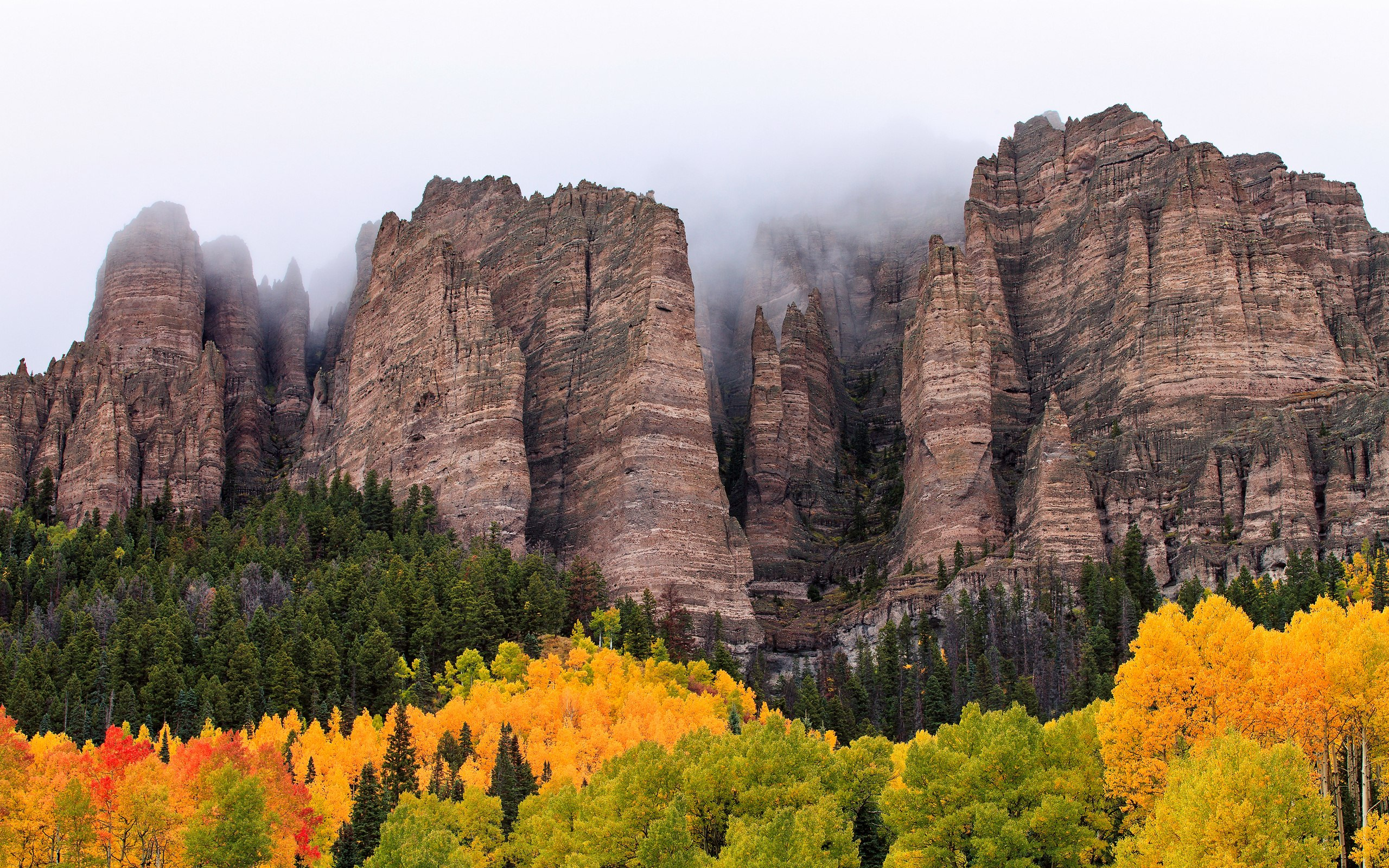 Canyons Autumn FOg