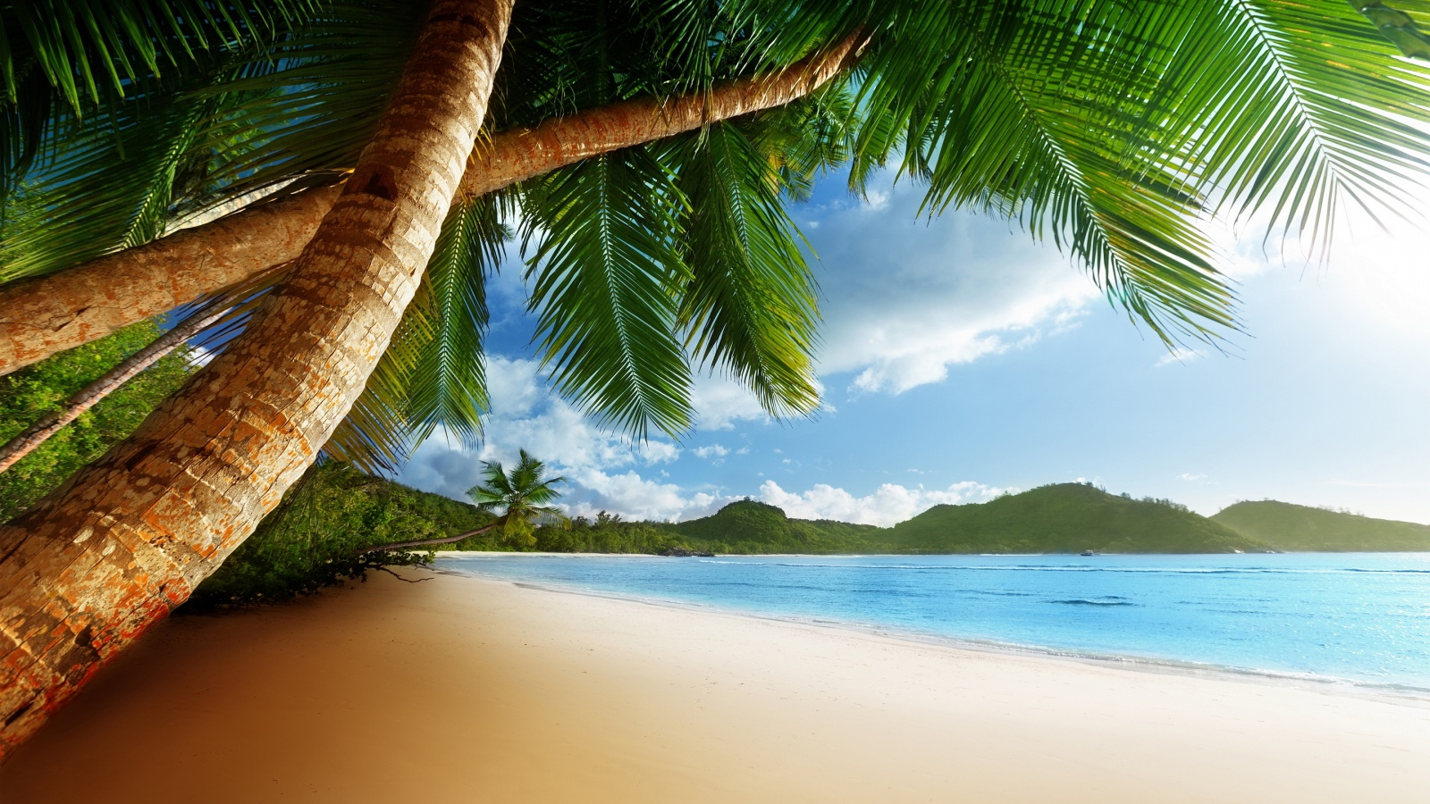 Beach caribbean Wallpaper in 1600x900 HD Resolutions