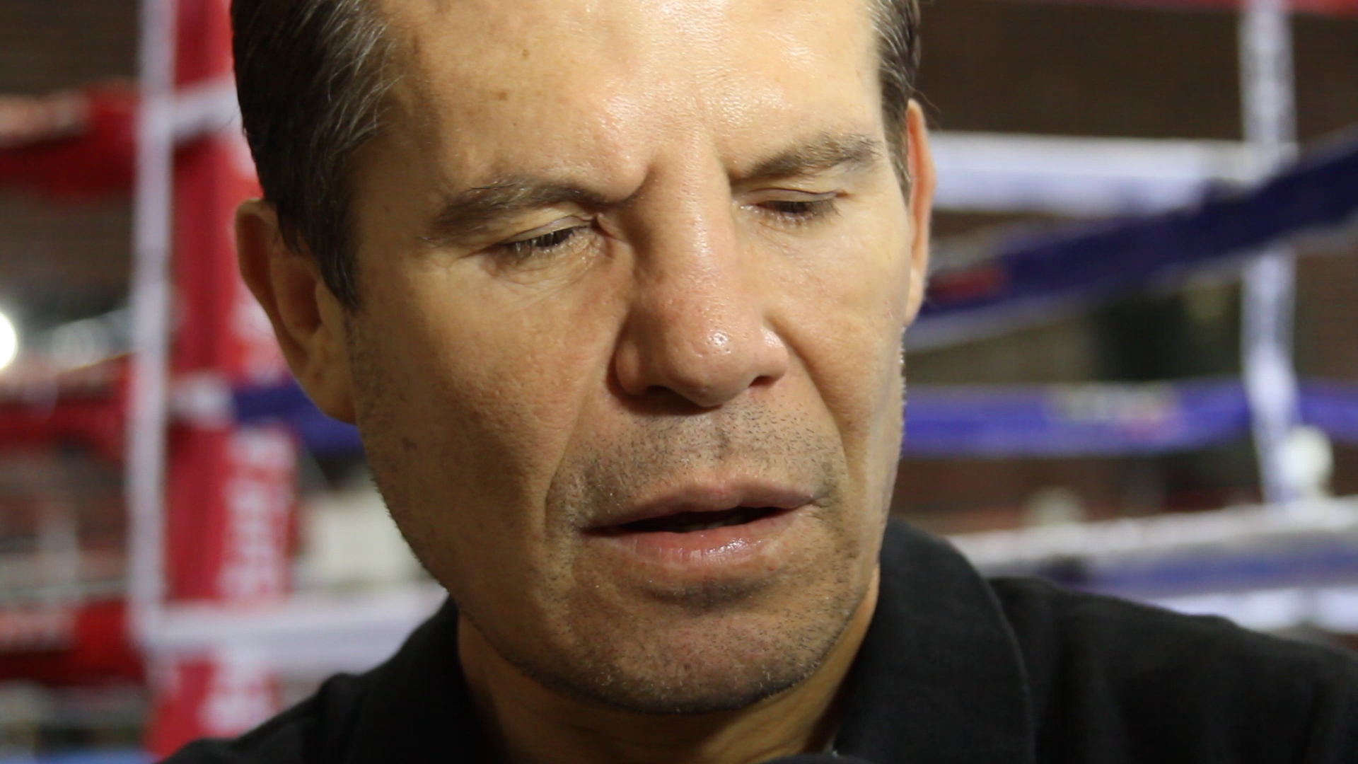 julio cesar chavez sr fight hub tv
