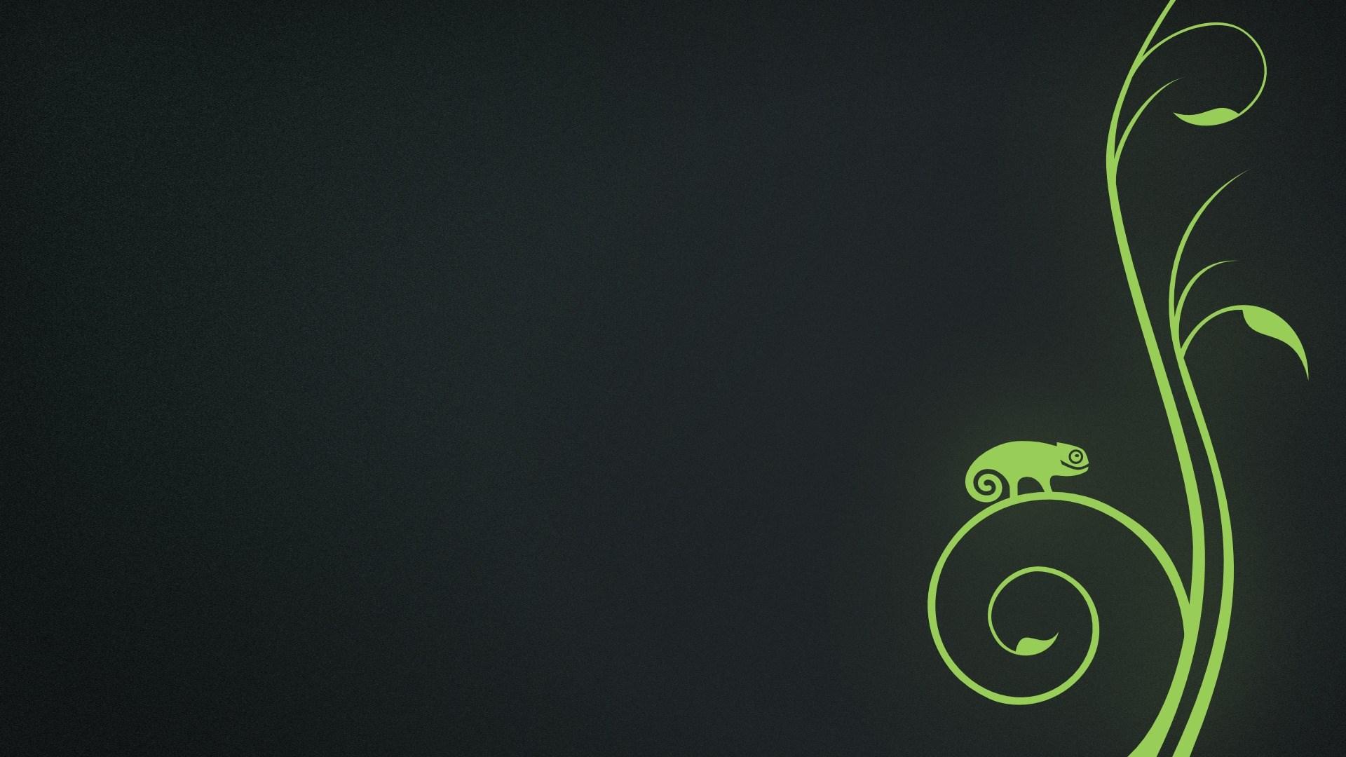Chameleon Green Art
