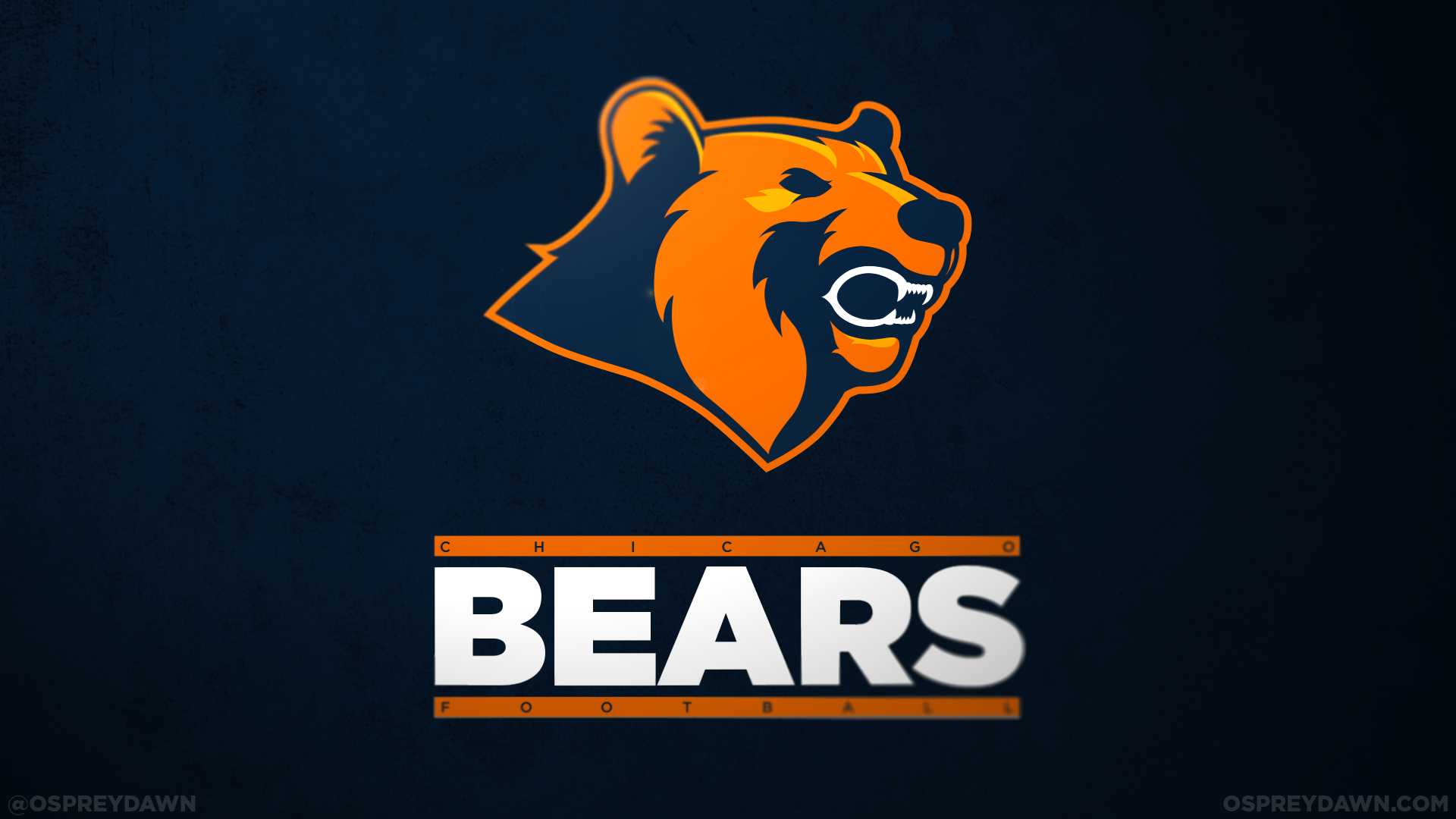the chicago bears essays