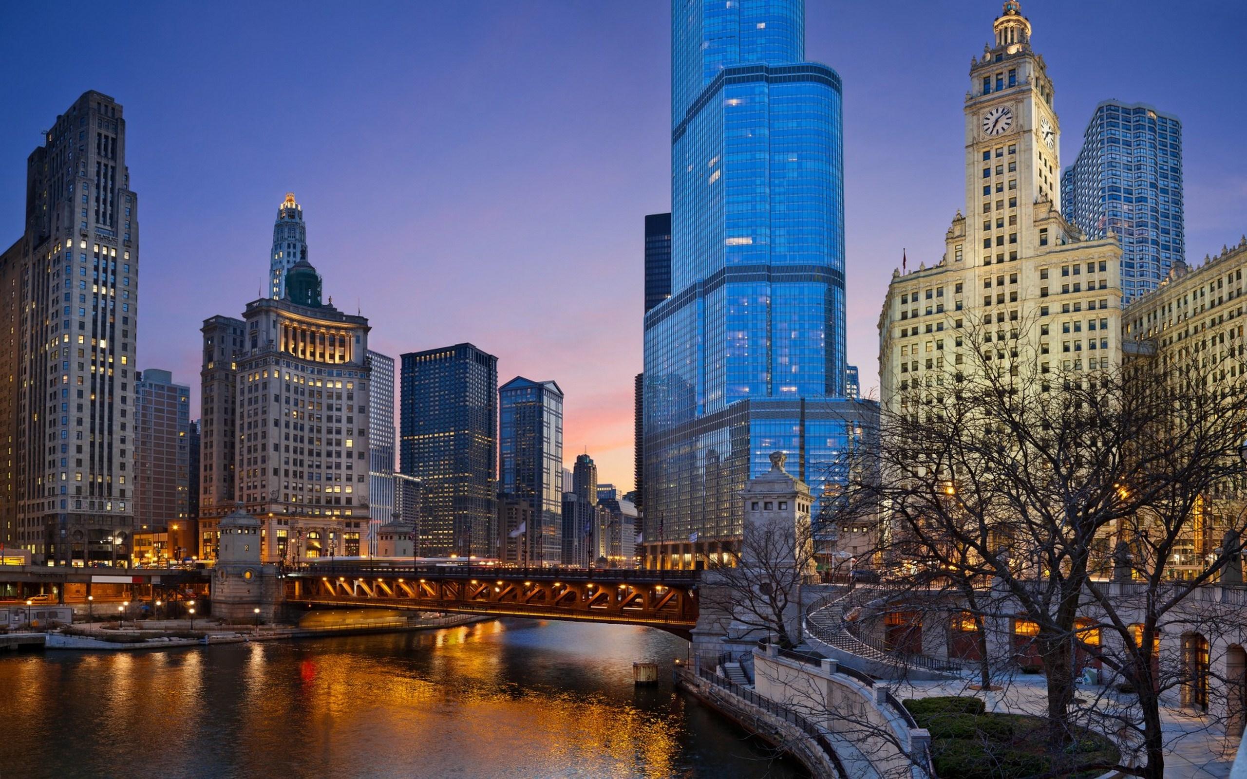 Chicago illinois night