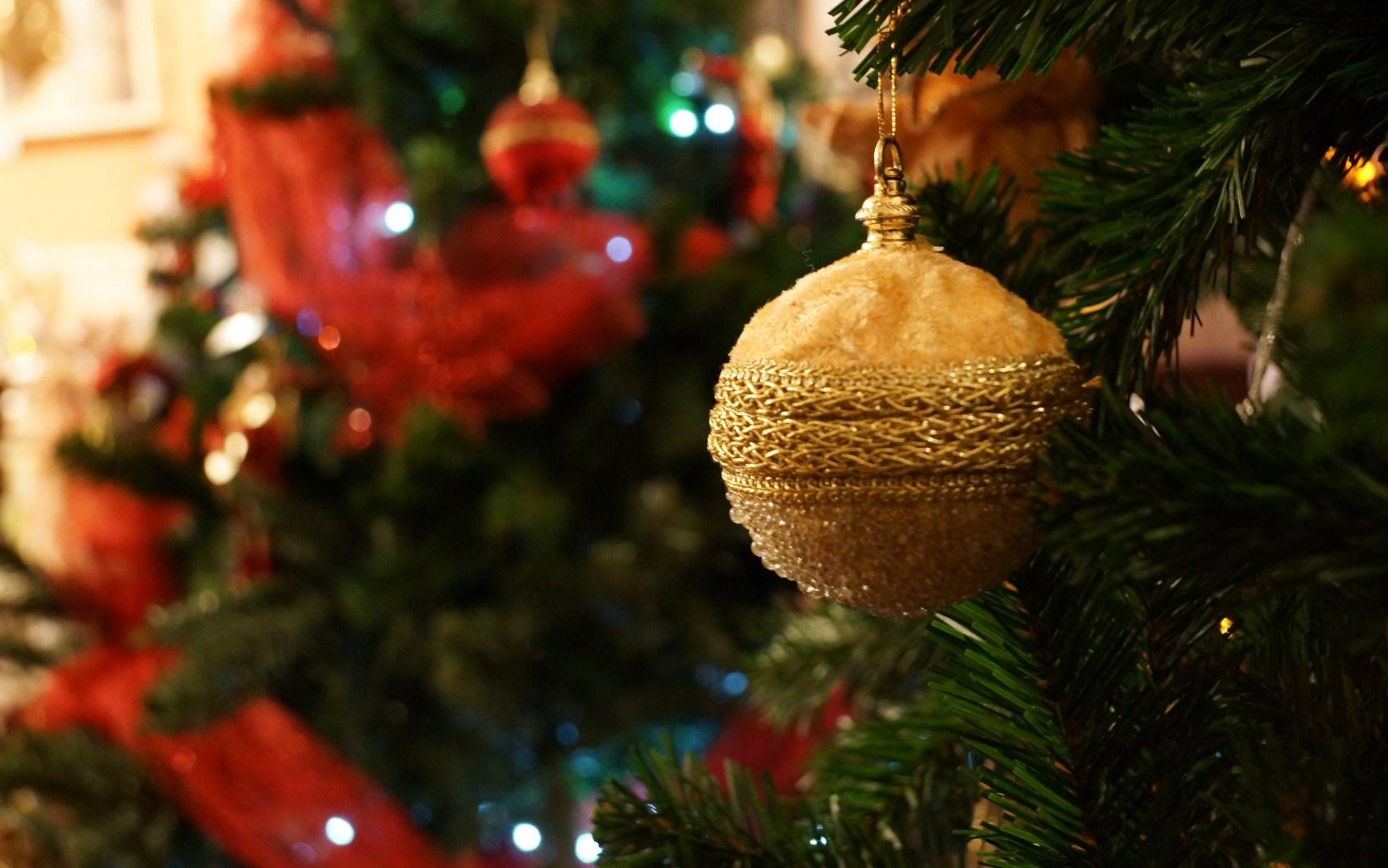 Christmas Tree Close-Up New Year HD Wallpaper