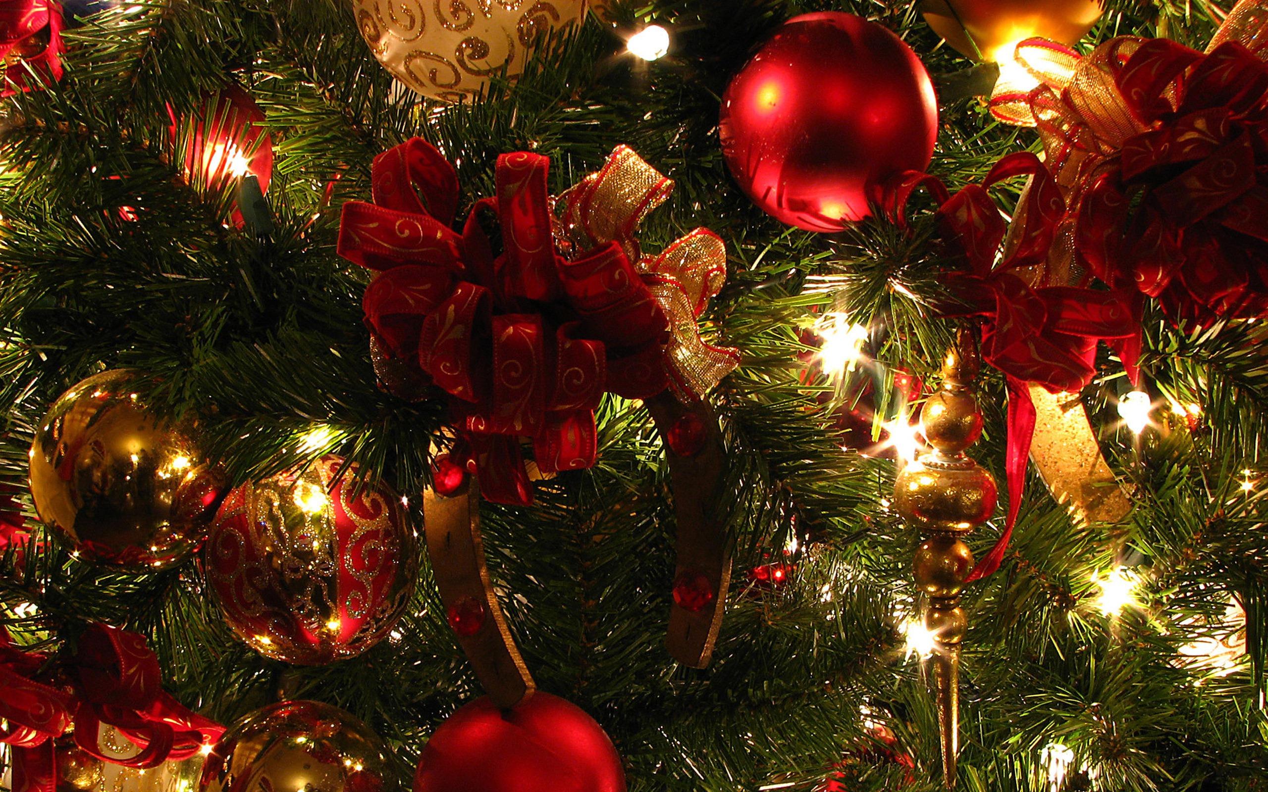Christmas Lights2