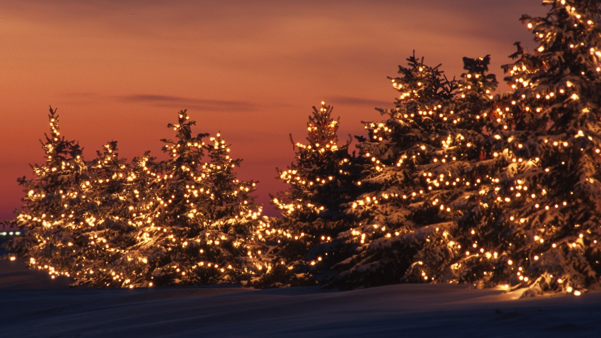 Christmas Winter Hd Lights Wallpaper