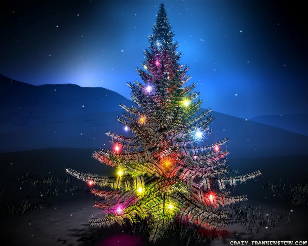 Christmas tree at night wallpaper 1280x1024 26297 - Arboles de navida ...