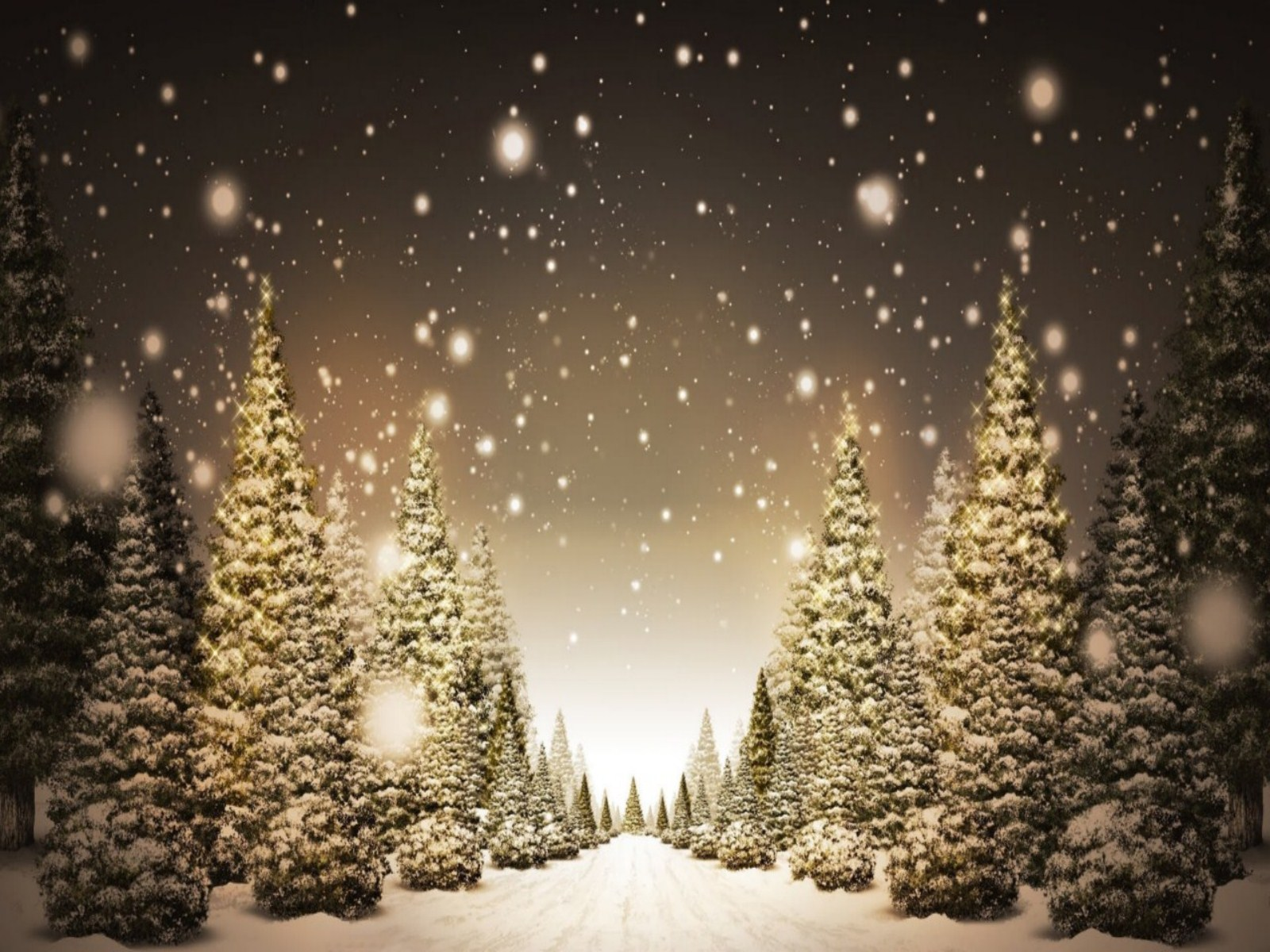 Christmas Tree Widescreen Wallpaper