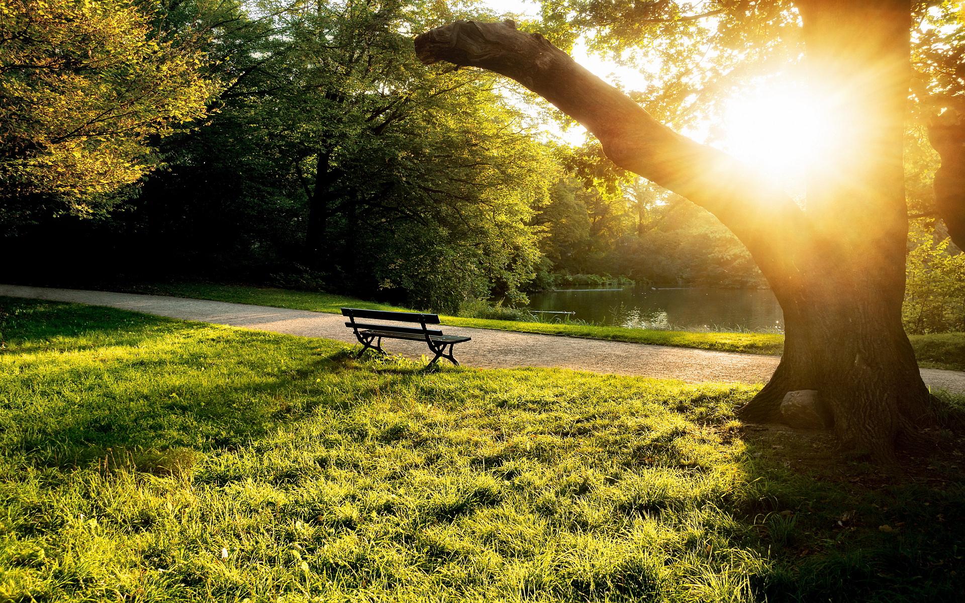 City park bench sunset
