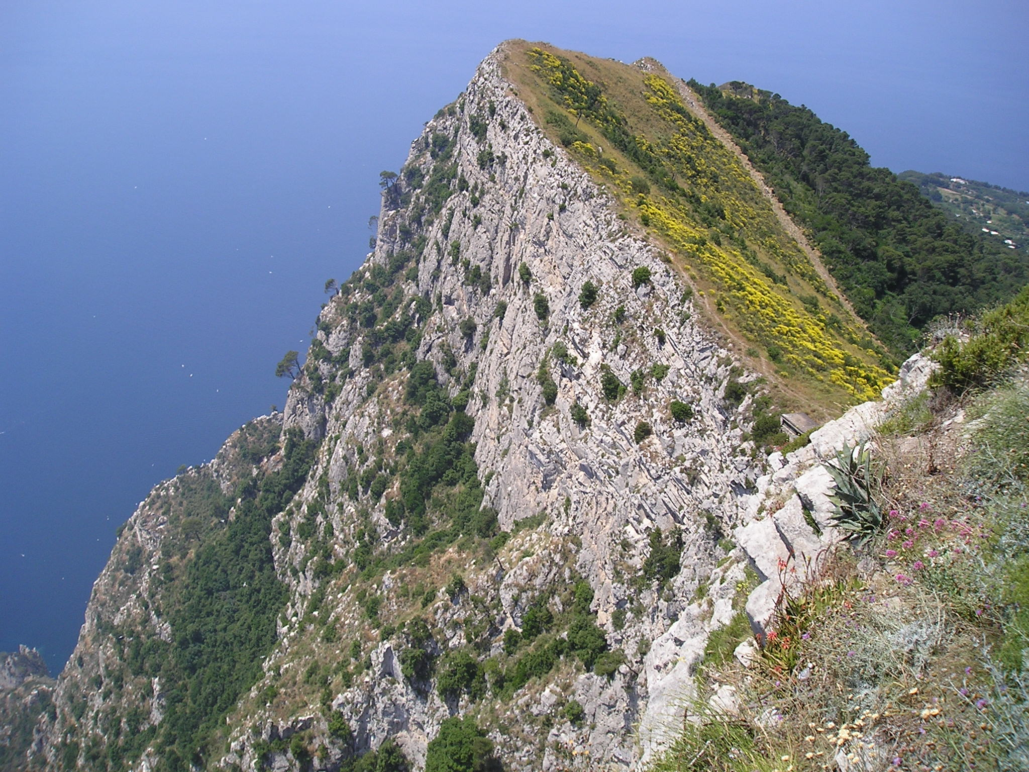 File:Anacapri cliff.jpg