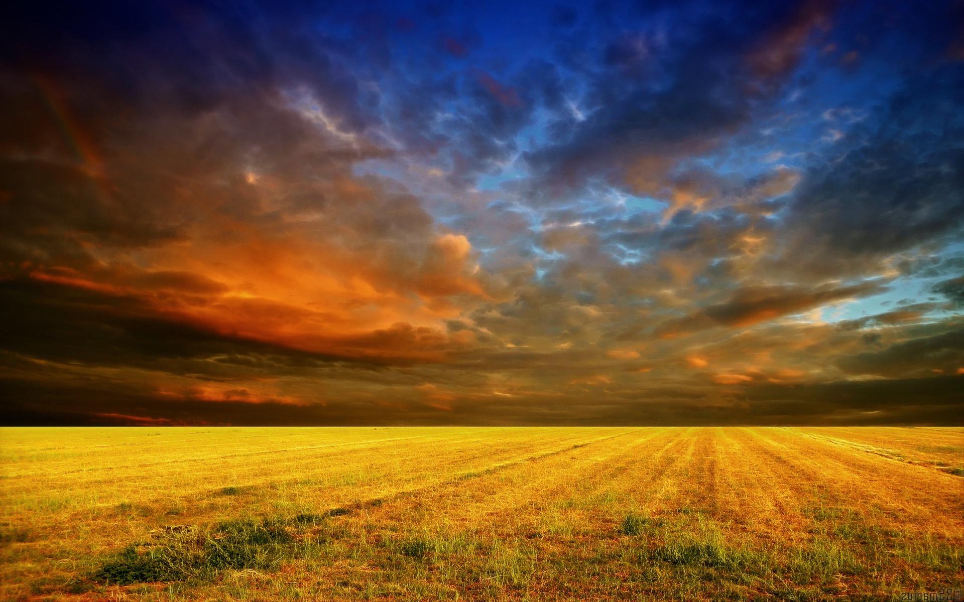 Cloudy sunset cornfield