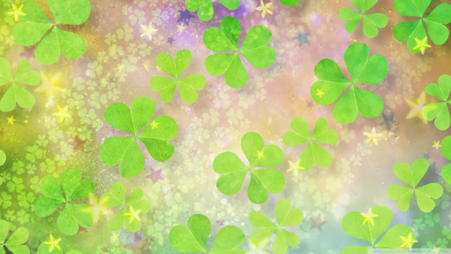 Clover Wallpaper 1920x1080 44794