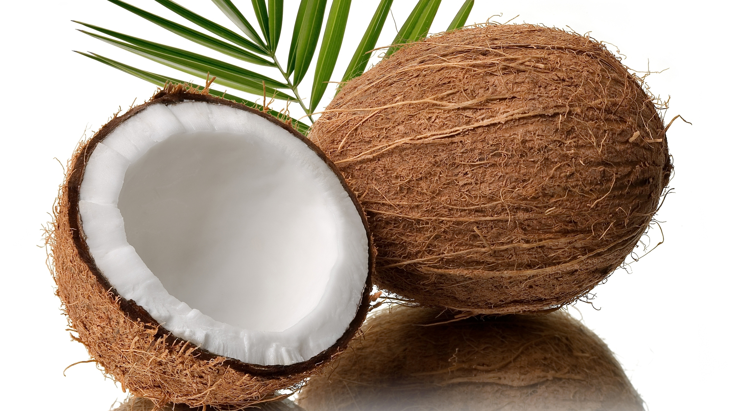 Coconut Pictures