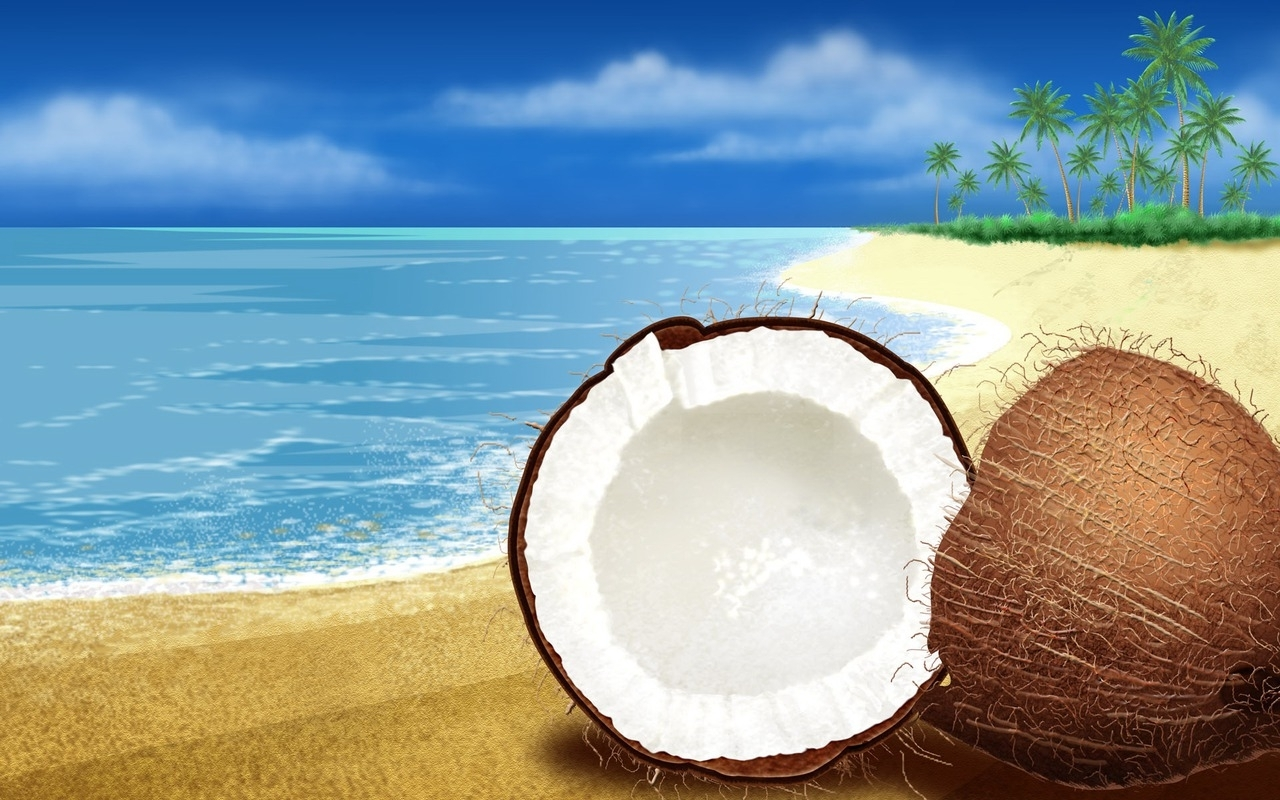 Coconut Wallpaper