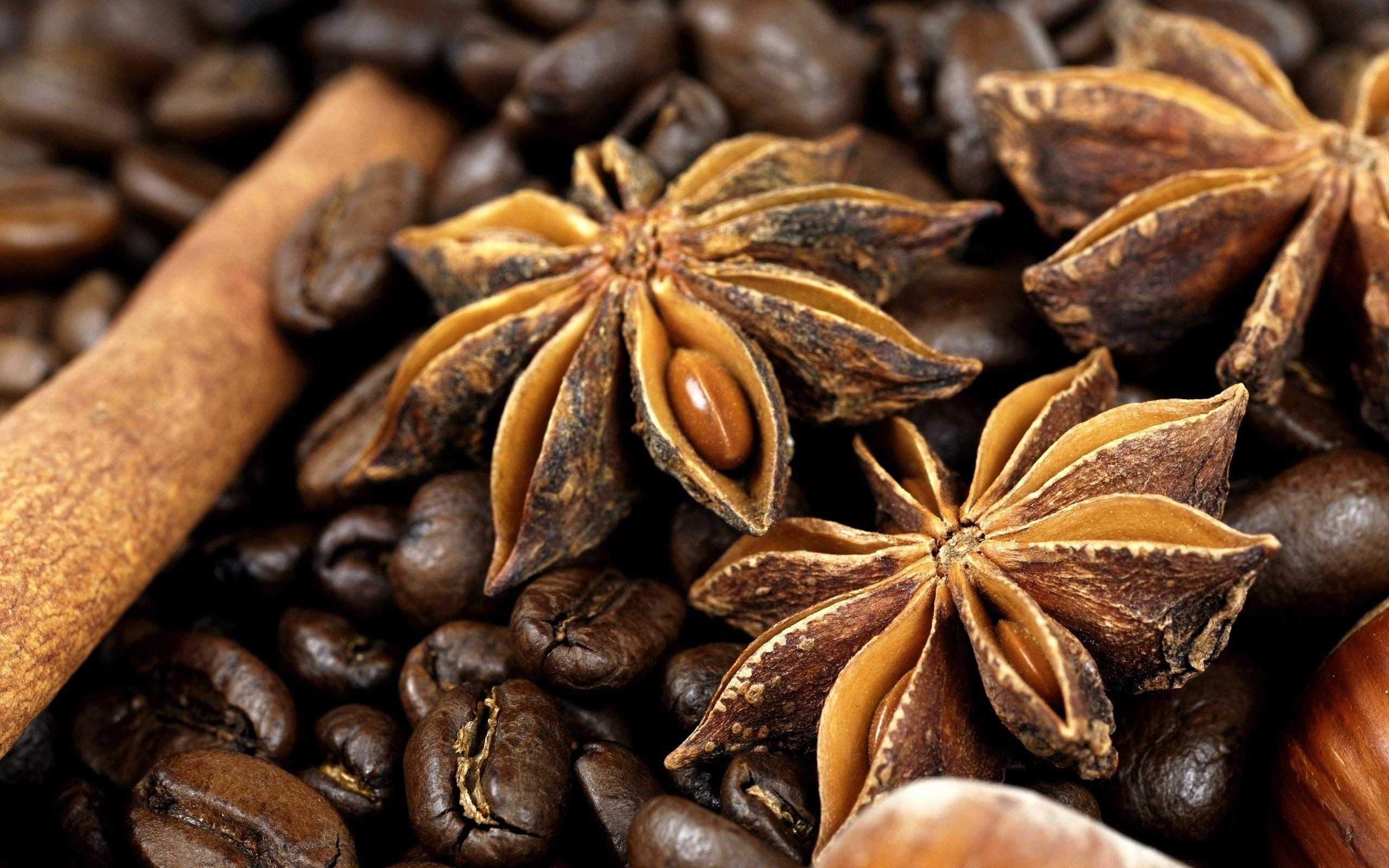 Coffee Anise Cinnamon Spices Photo