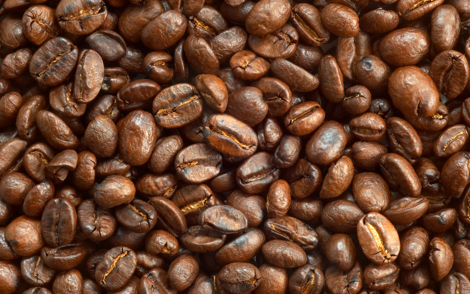 Coffee and coffee beans close-up 15665