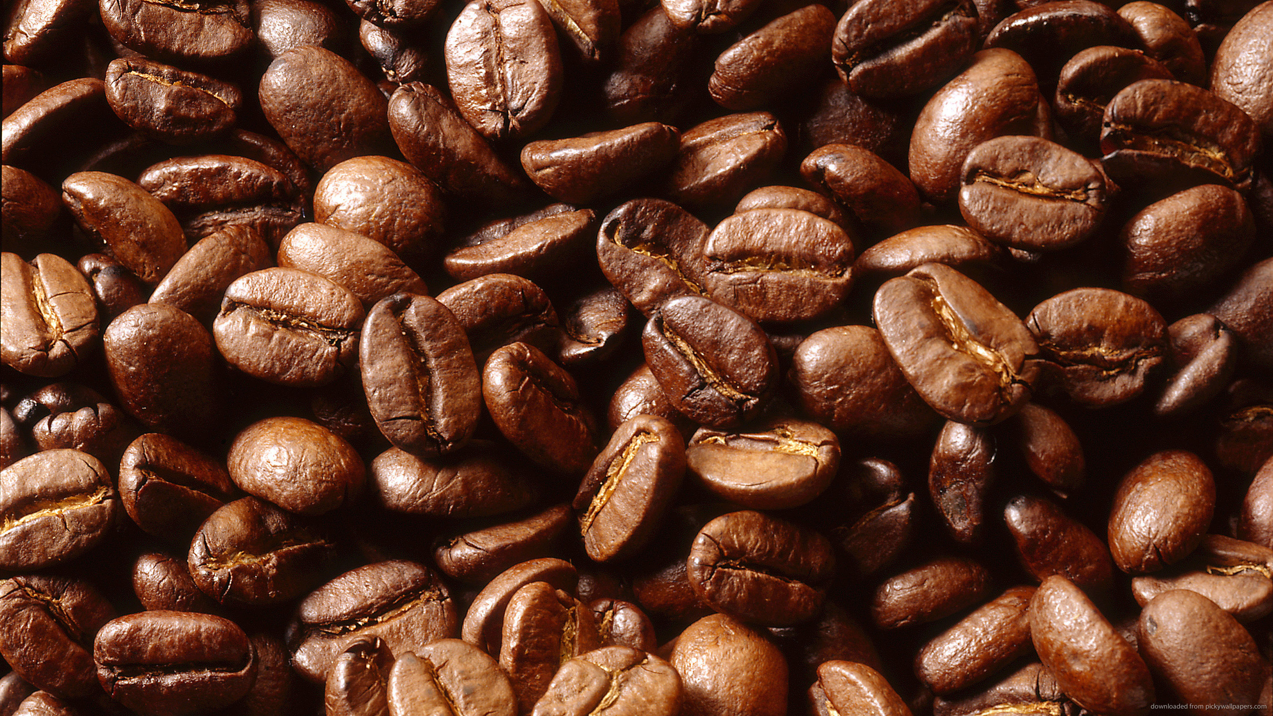 Coffee Beans wallpaper | 2560x1440 | #66896