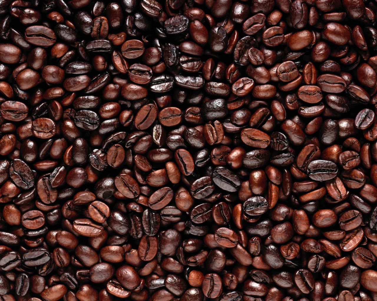 Coffee Grains wallpaper | 1280x1024 | #78546