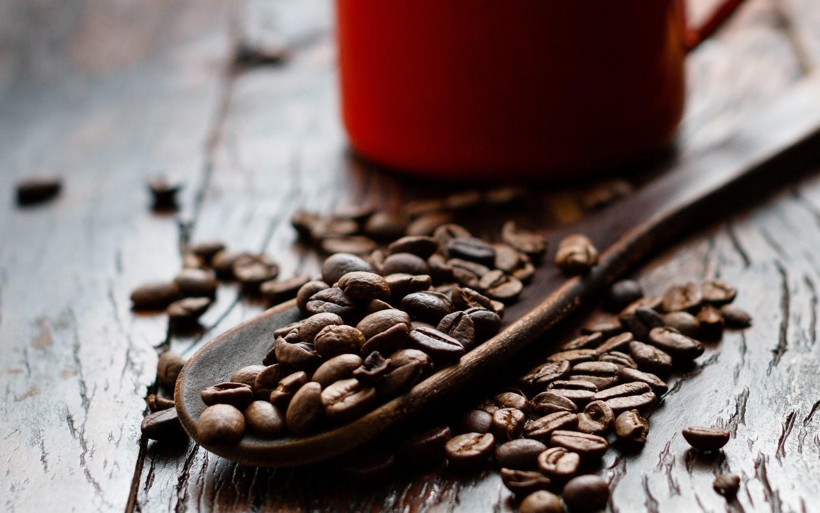 Coffee Spoon Close-Up