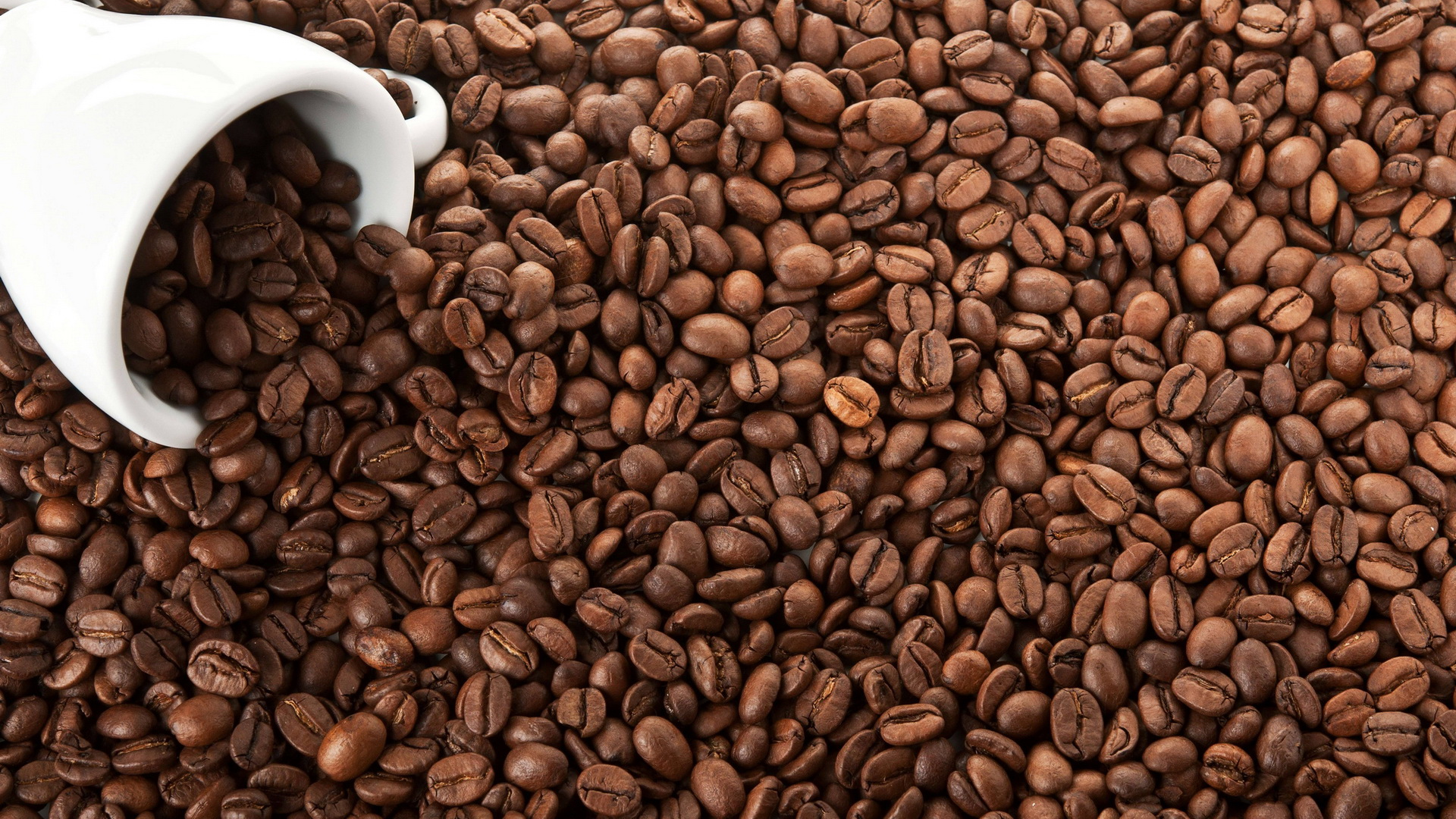Coffee Damnwallpapers