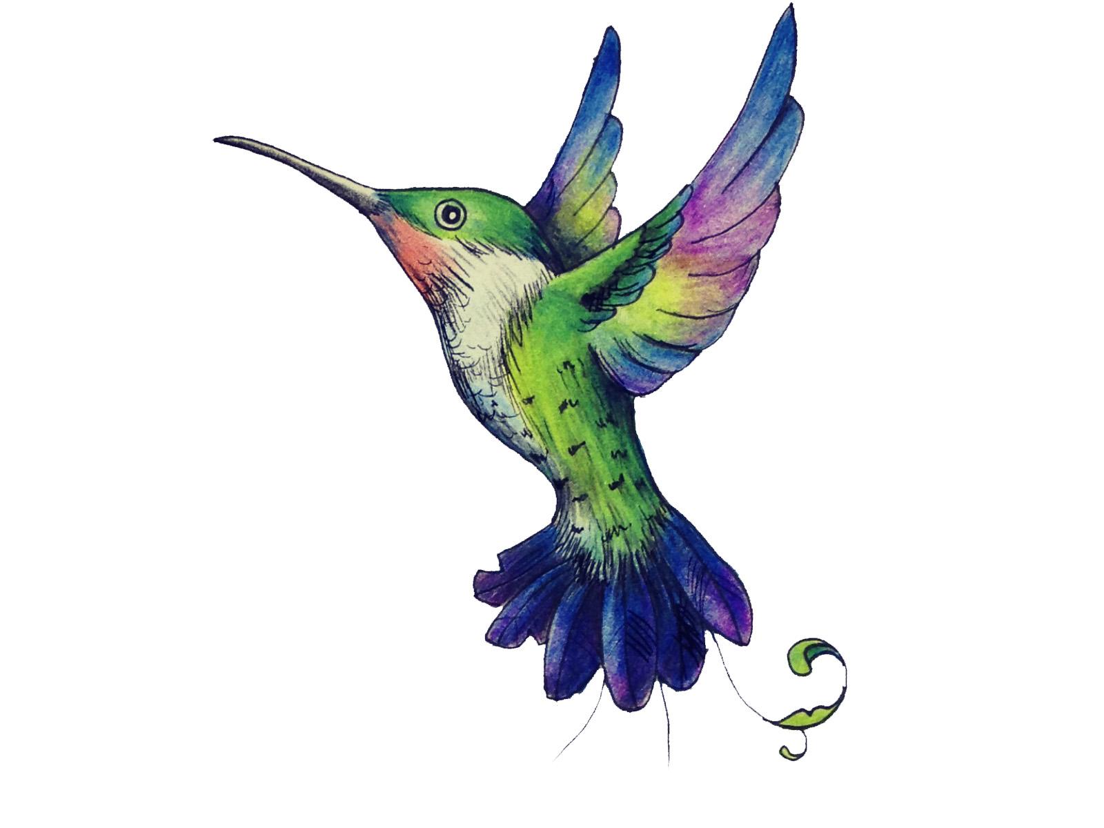 Hummingbird Tattoo Colored wallpaper
