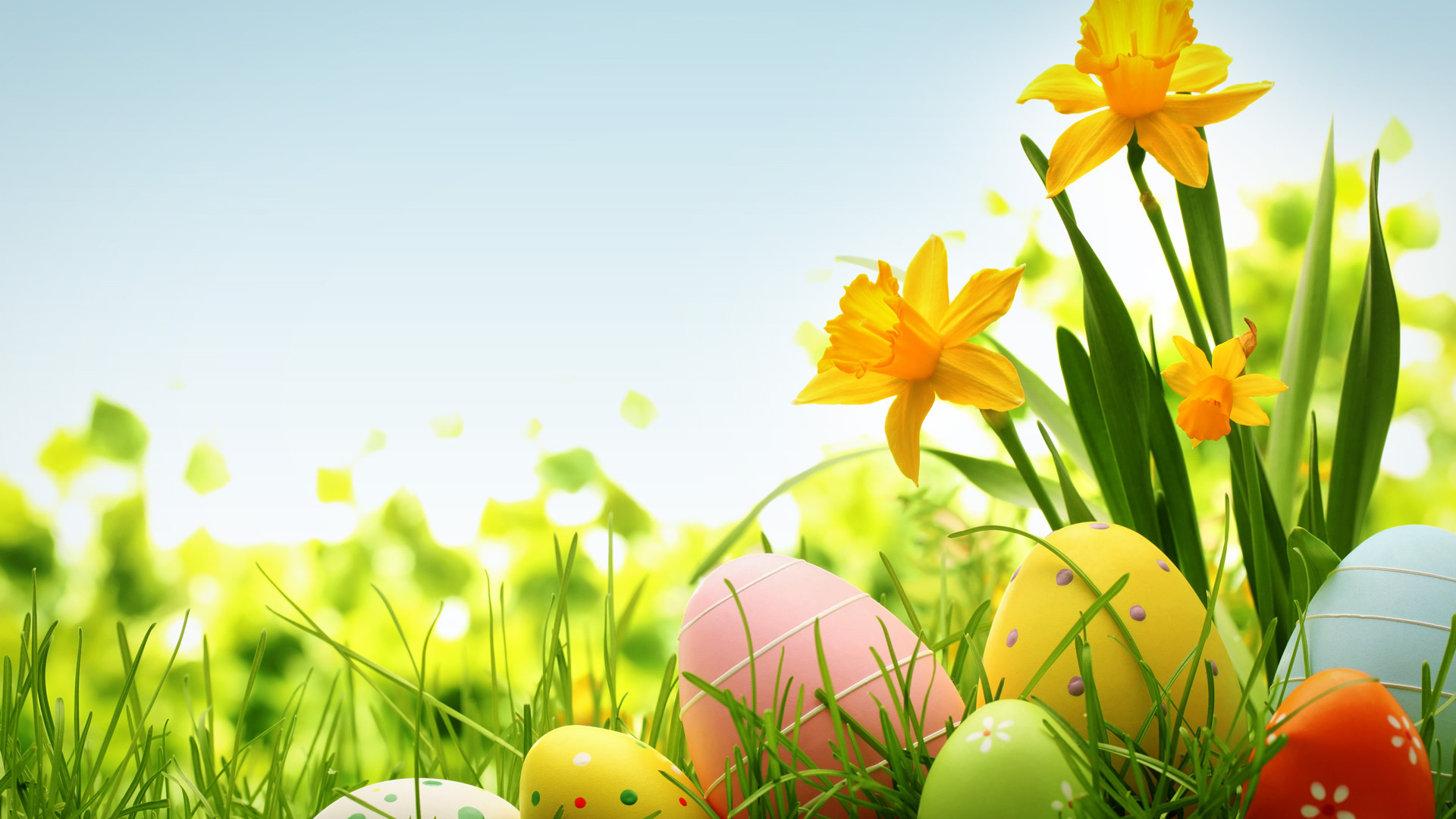 Colorful Easter Eggs Wallpaper 1920x1080px