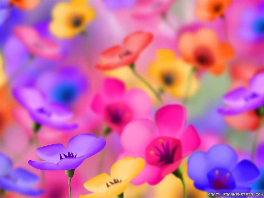 Colorful Flower Wallpapers Hd Widescreen 2 HD Wallpapers