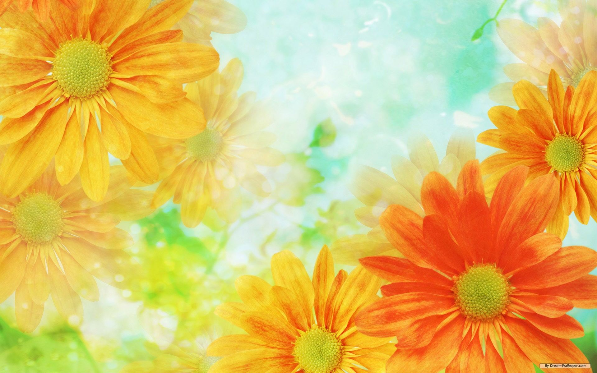 Cool Flowers Background