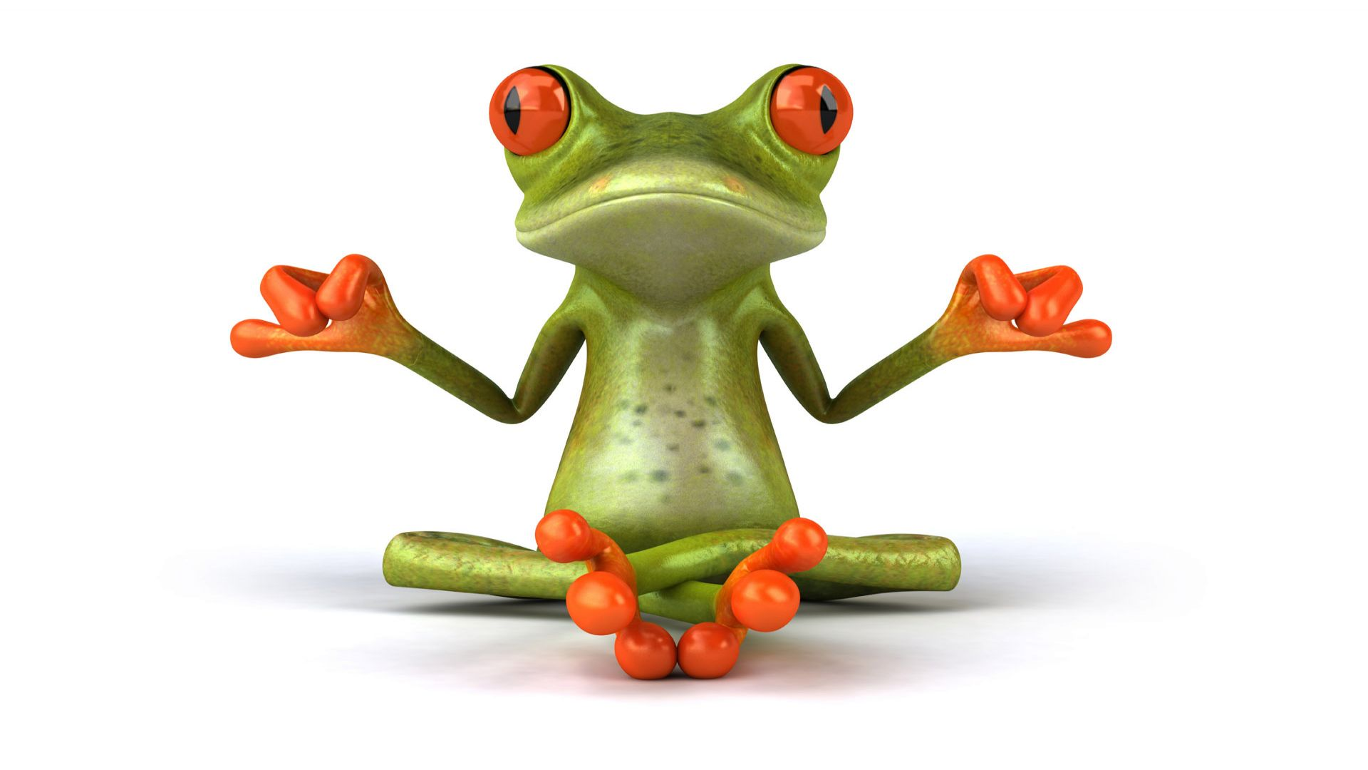 Funny Yoga Frog Wallpaper Picture 280