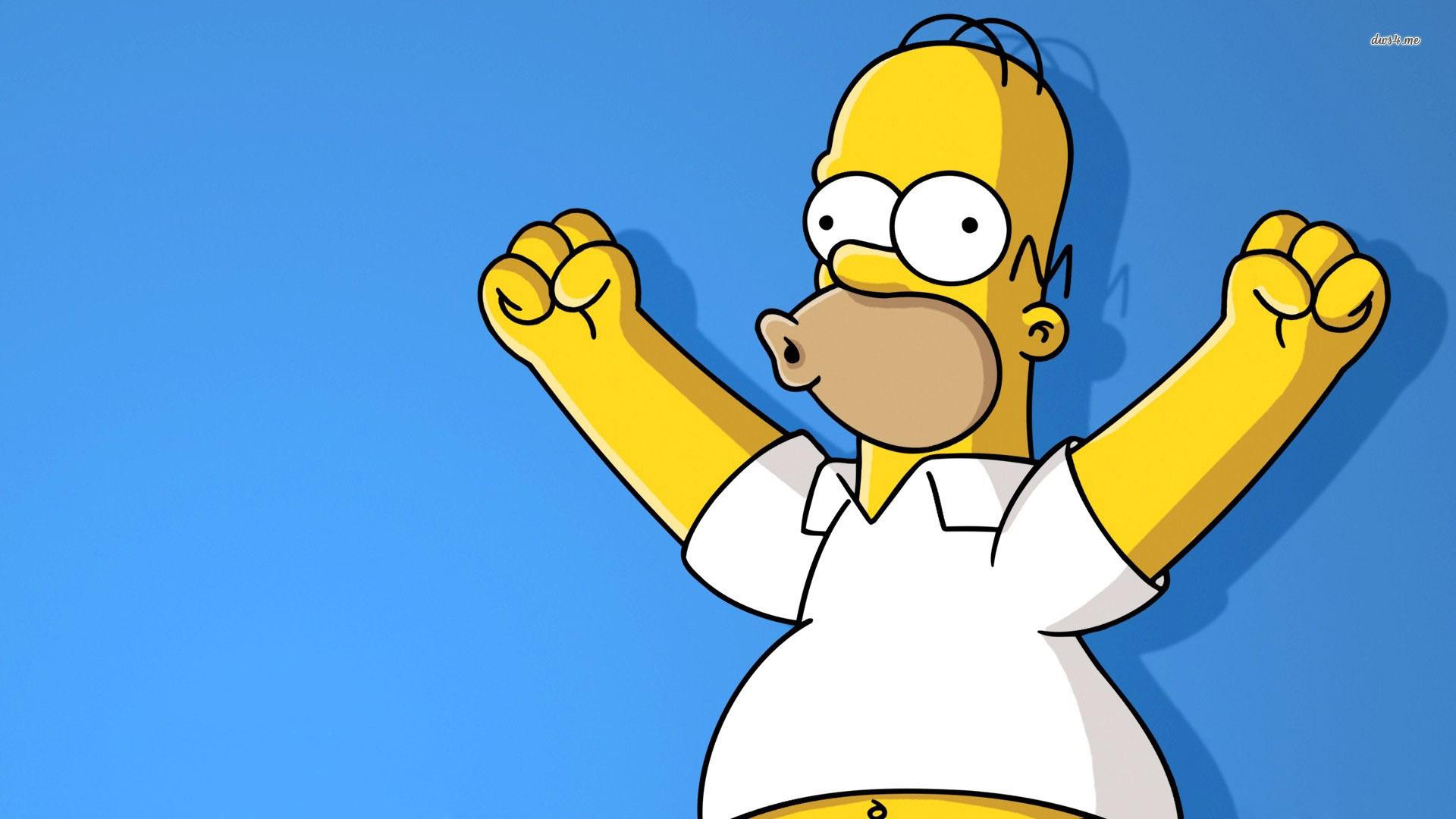 Cool Homer Simpson Wallpaper 22967 1920x1200 px