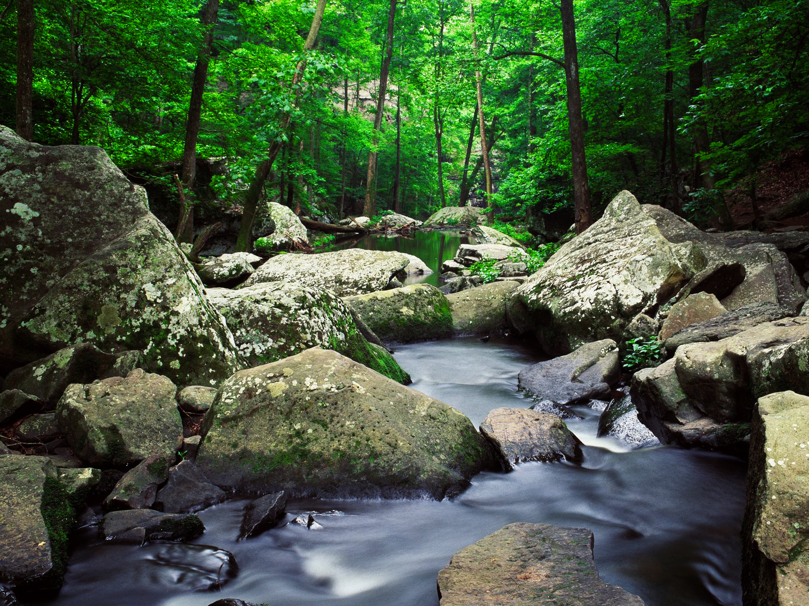 Mountain Stream Pictures