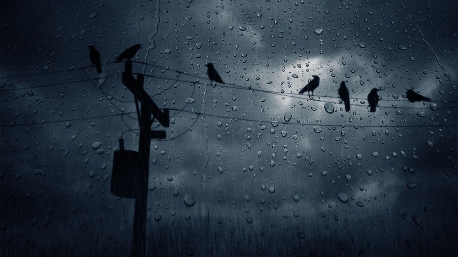 Rain Dark Wallpaper Pc Wallpaper